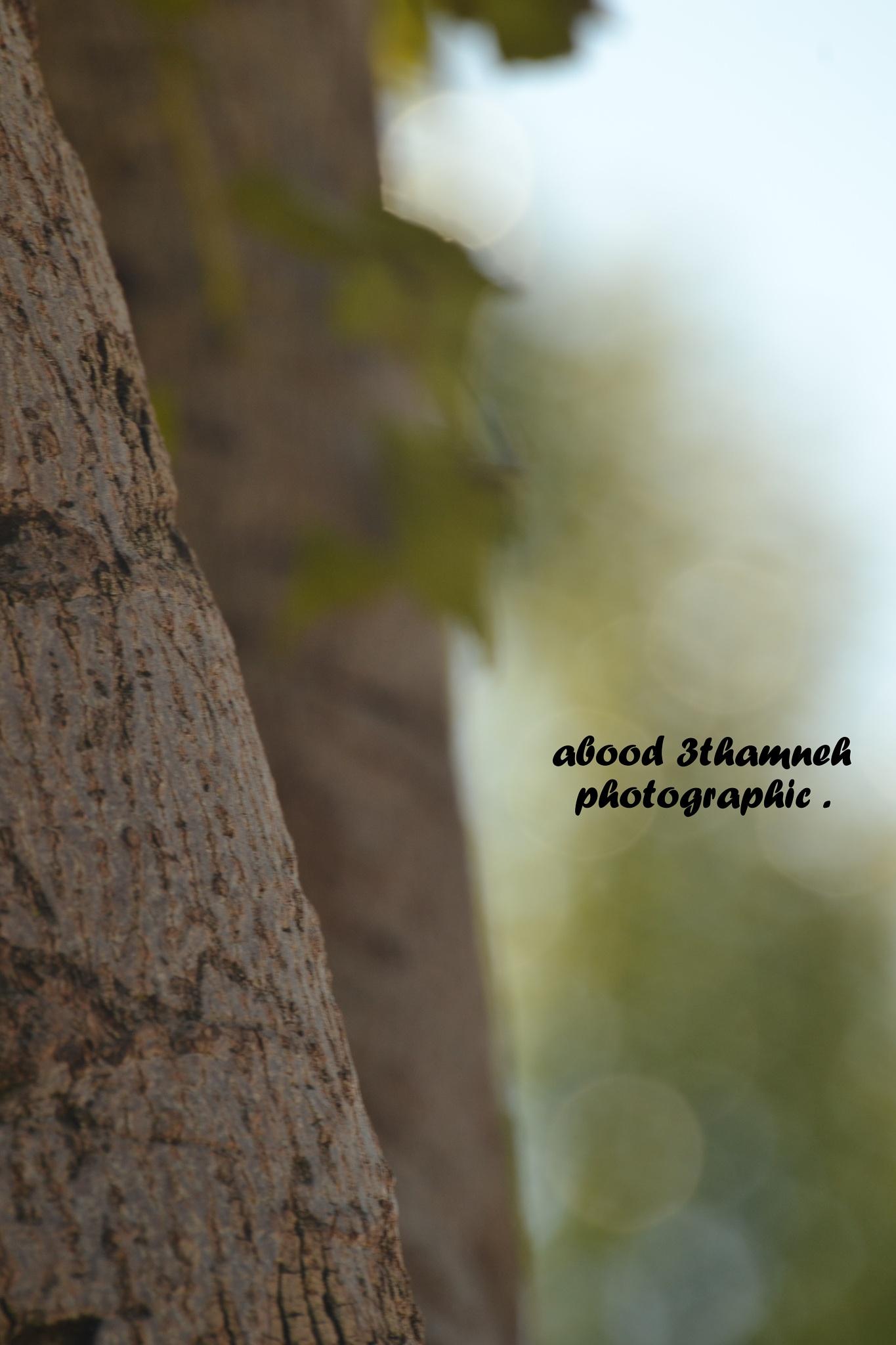 YOUR OPINON by Abood Slameh Alathmneh