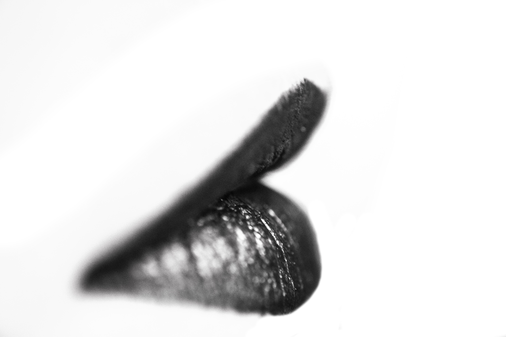 Lips by Russ Burton