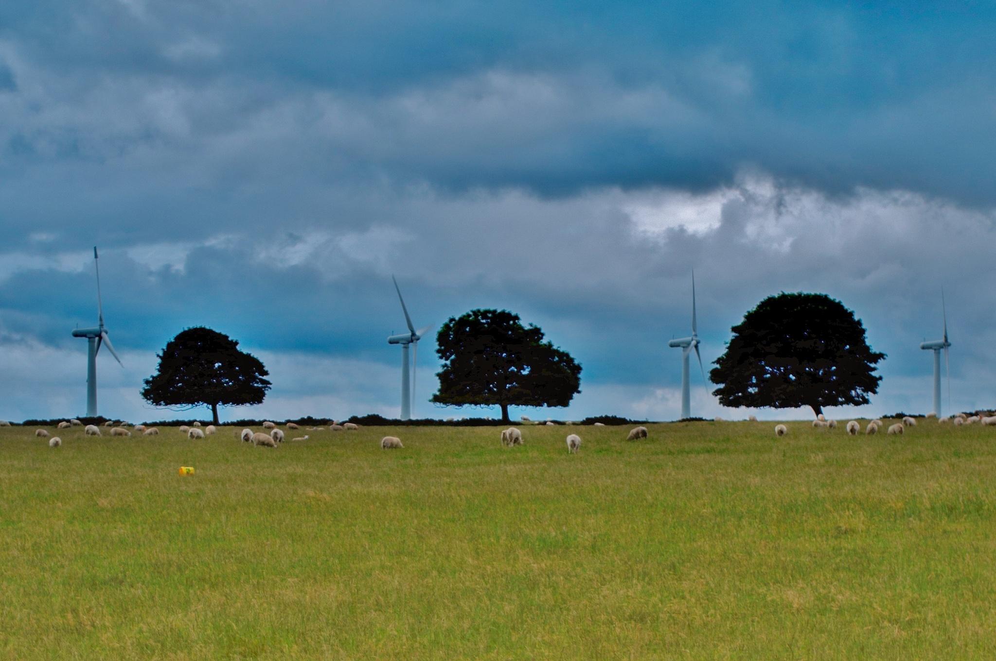 Wind farm by Russ Burton