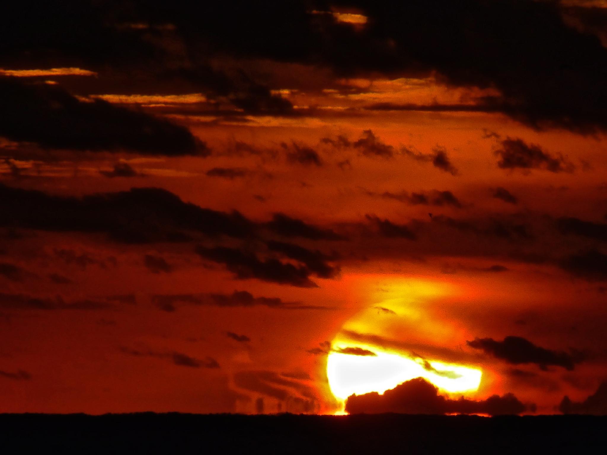 Carolina Sunrise by Hunter Ten Broeck