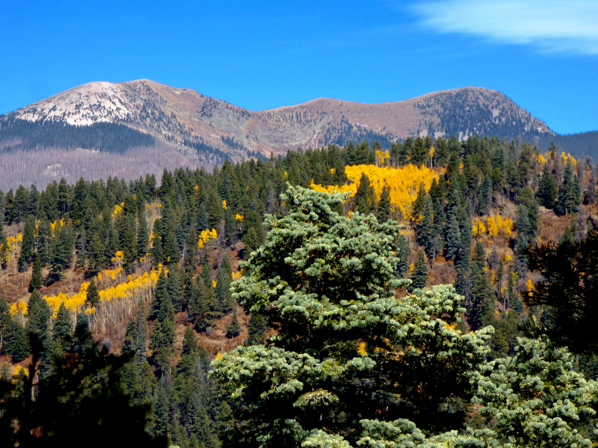 Pecos Baldy with Fall foliage  by Hunter Ten Broeck