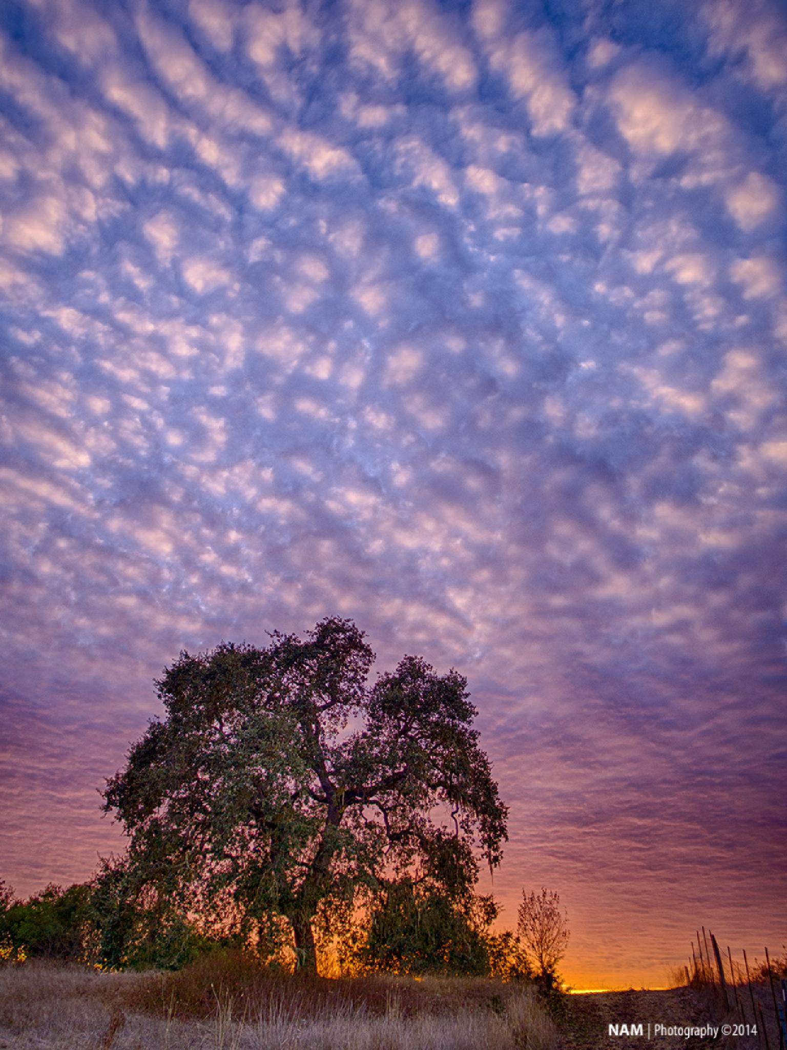Puffy Clouds by nam.ing