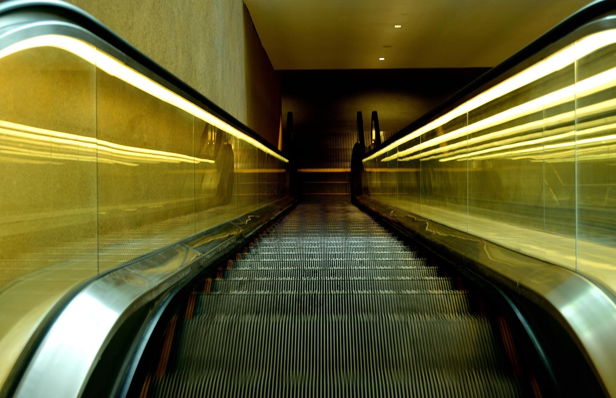 Photo in Architecture #escalator #basement