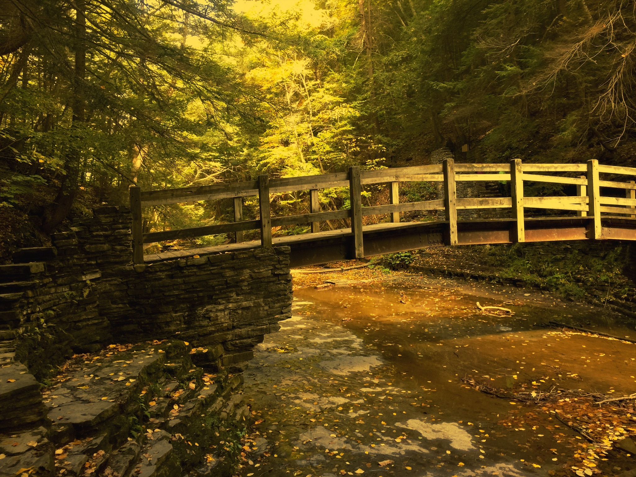 Fall at Buttermilk Falls, Ithaca, NY by Sait M. Ilhaner
