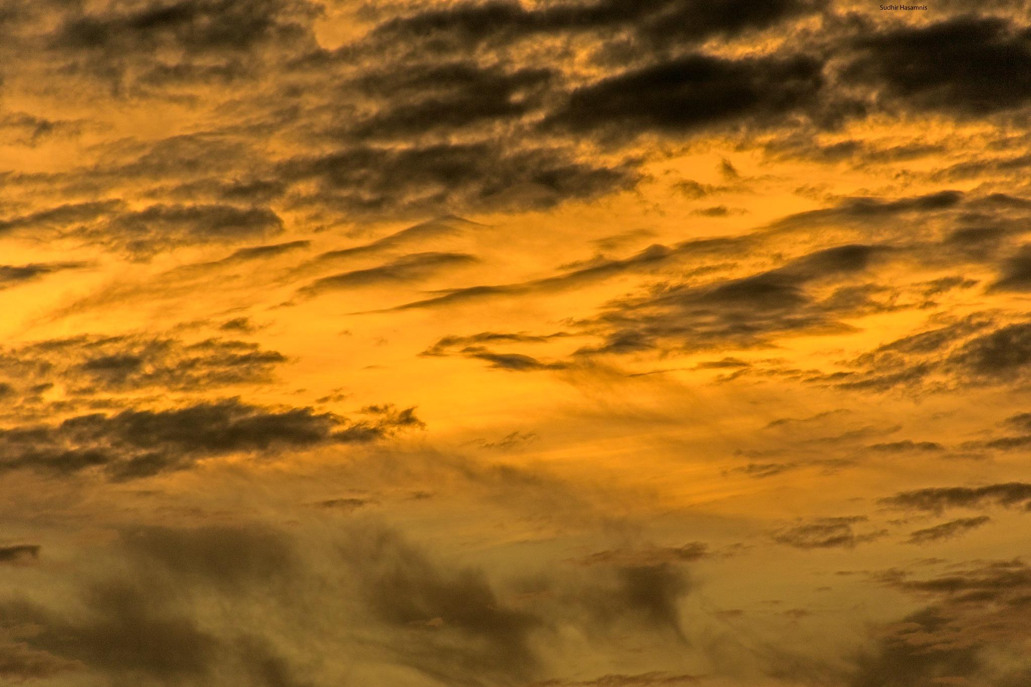Yellow turmoil by DrSudhir Hasamnis