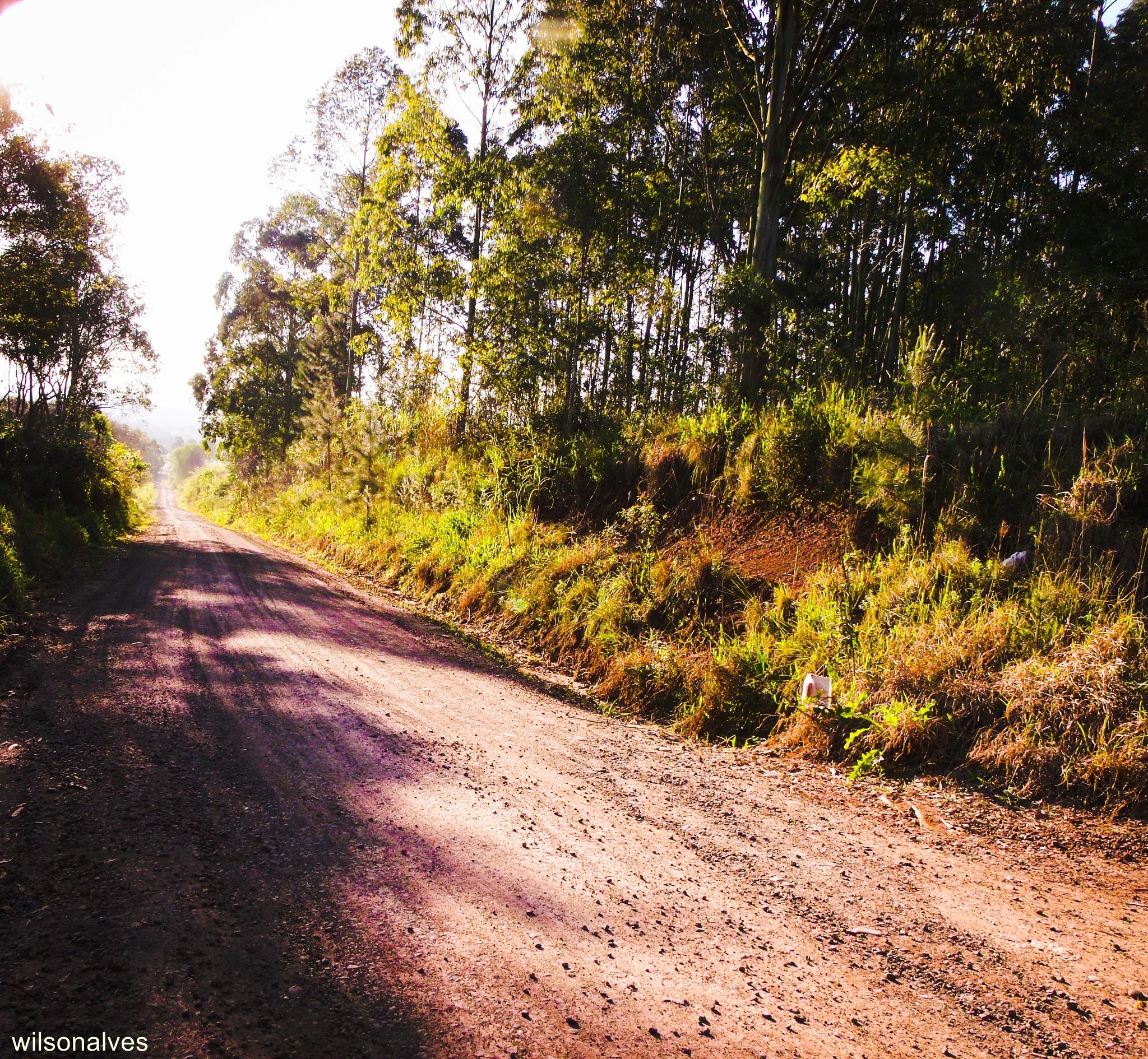 estrada sem fim... by wilsonalves