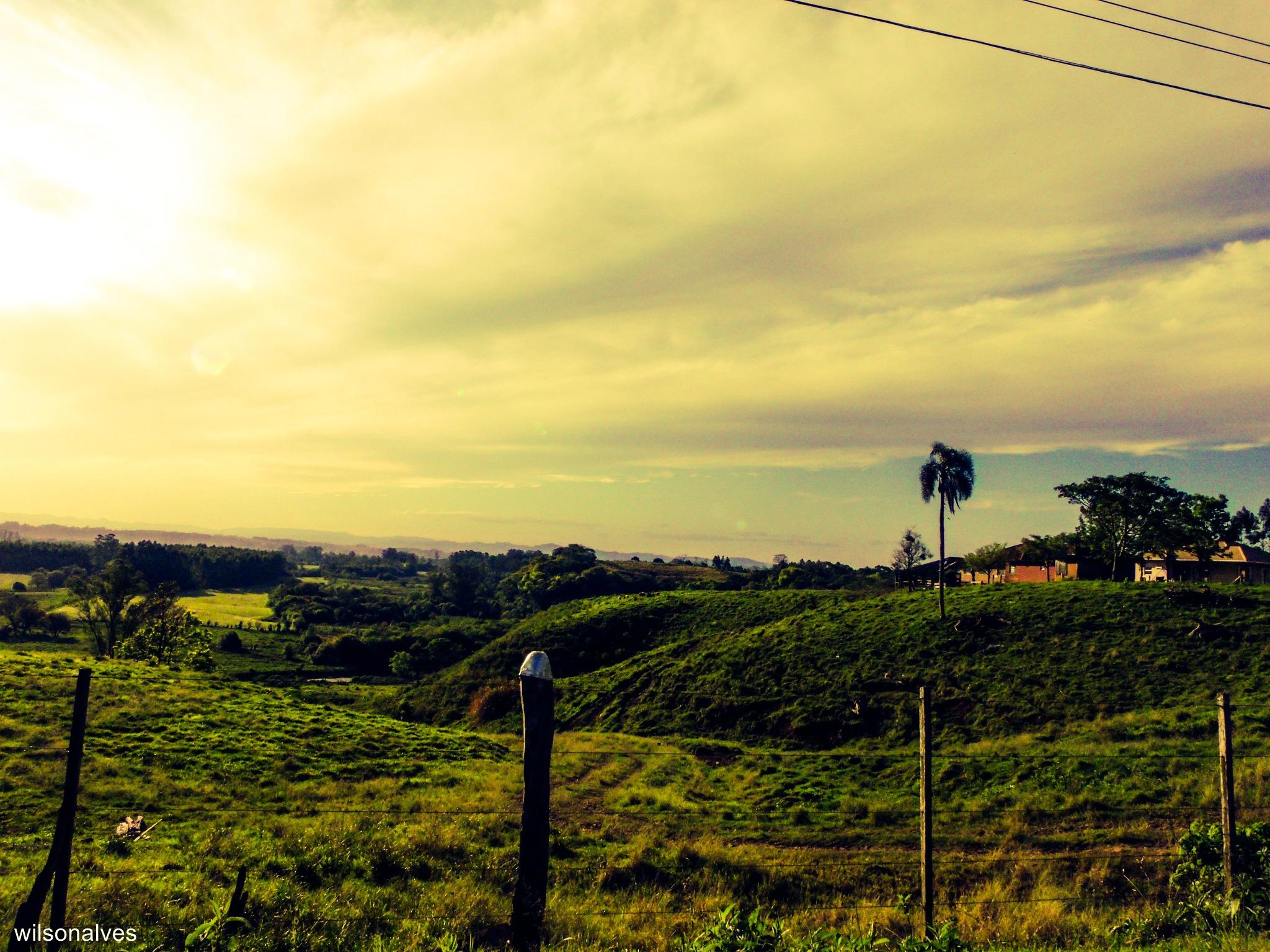 campos do sul do Brasil... by wilsonalves