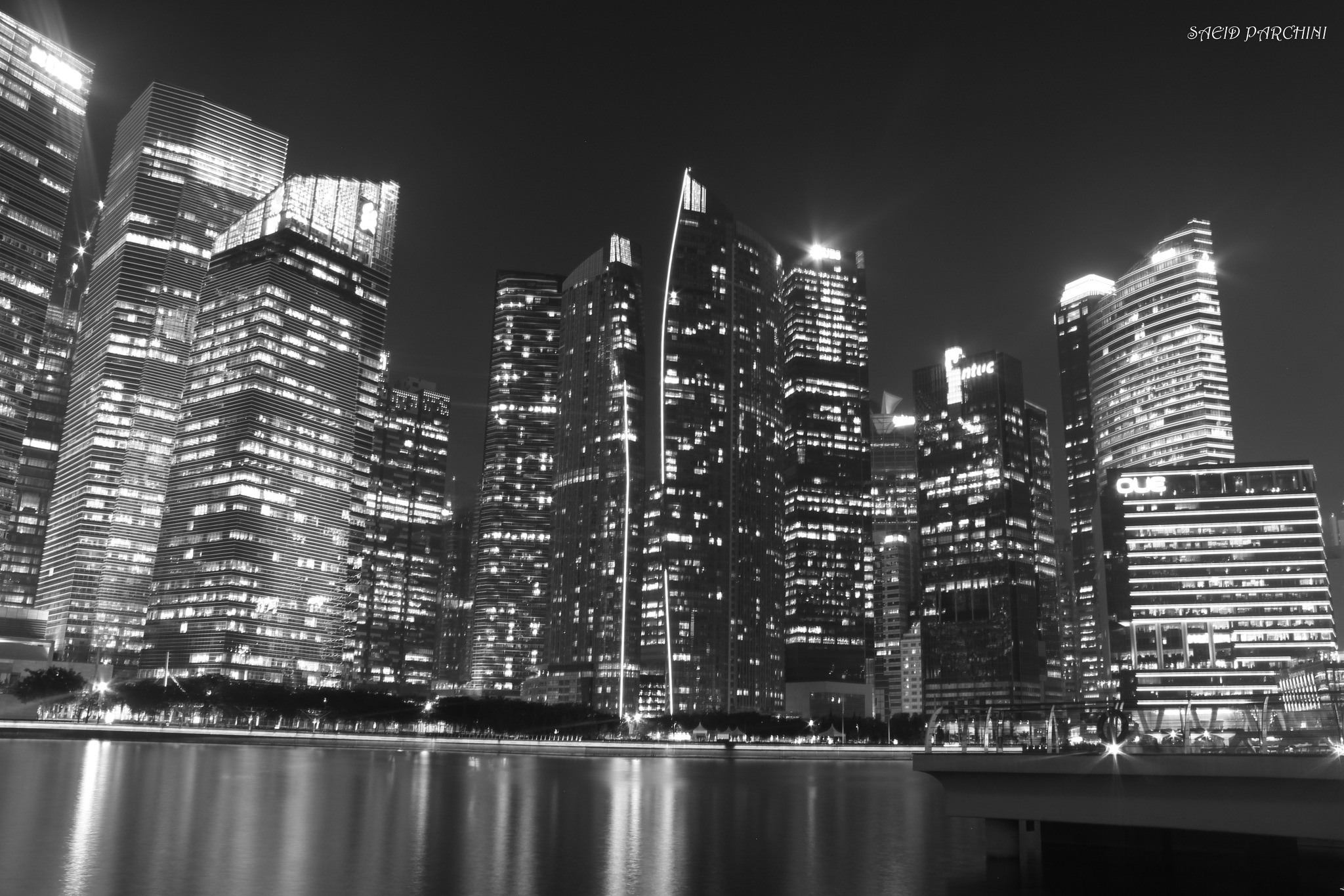 Black and White Singapore by saeid parchini