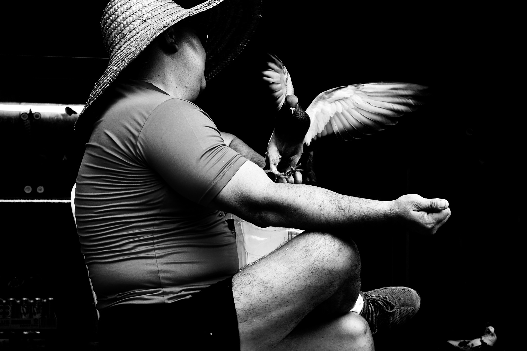 the bird-man  by marvinbuhian