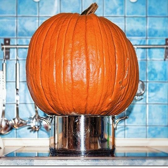 Pumpkin  by Markus