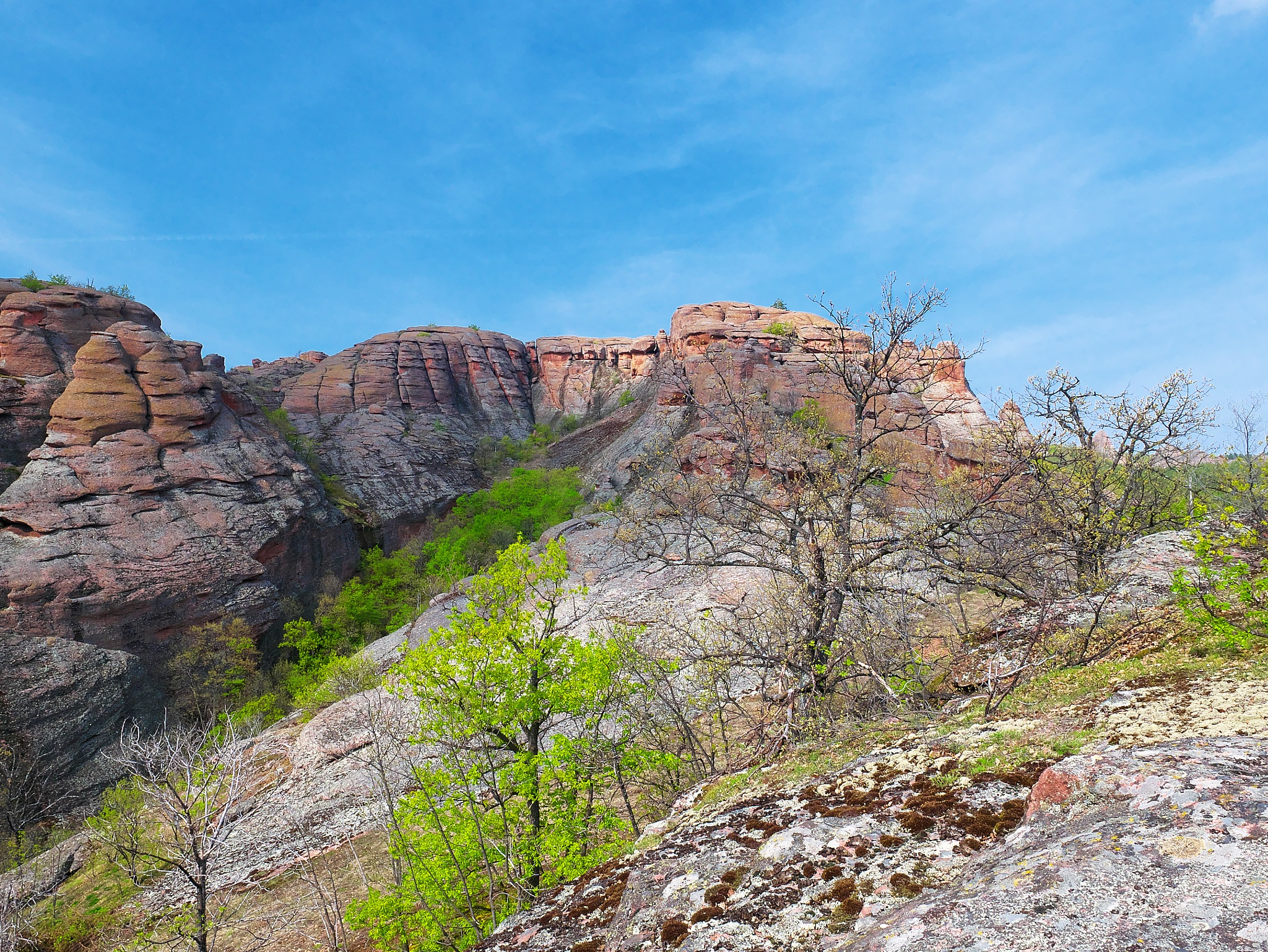 Spring on the rocks by Stanvas