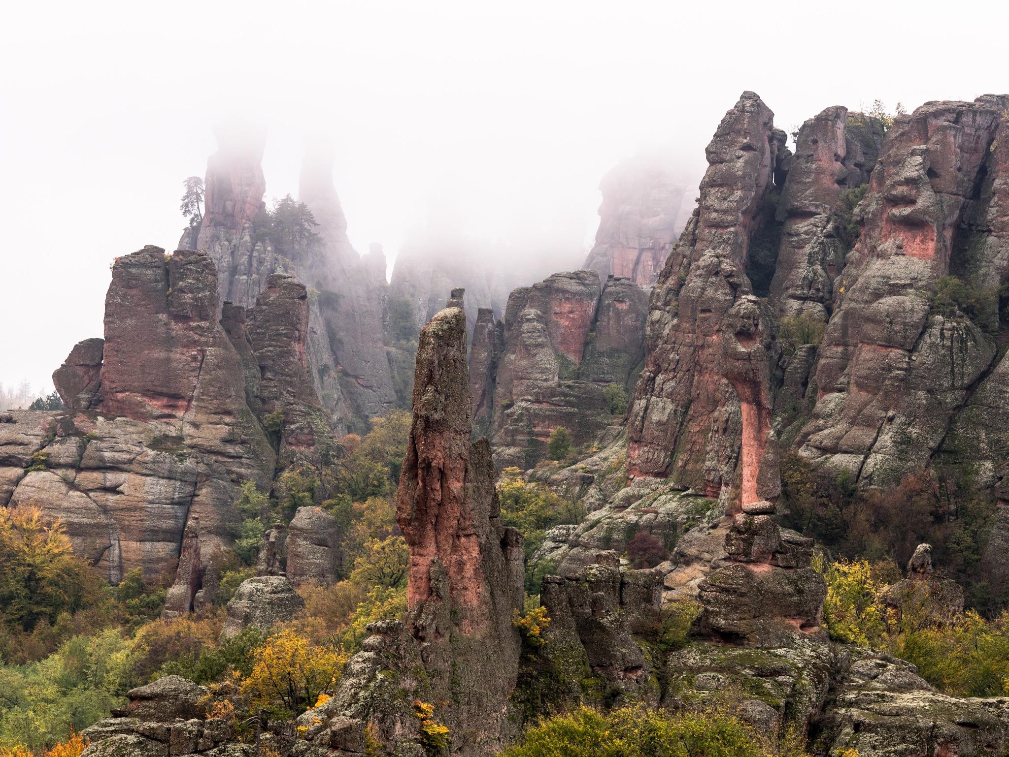Autumn between rocks by Stanvas