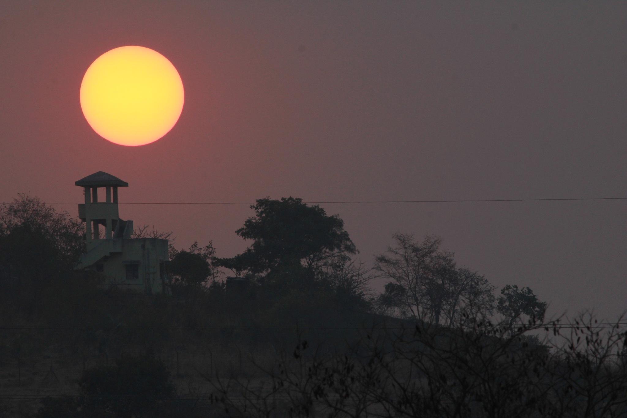 Evening Hues! by Surekha Pillai