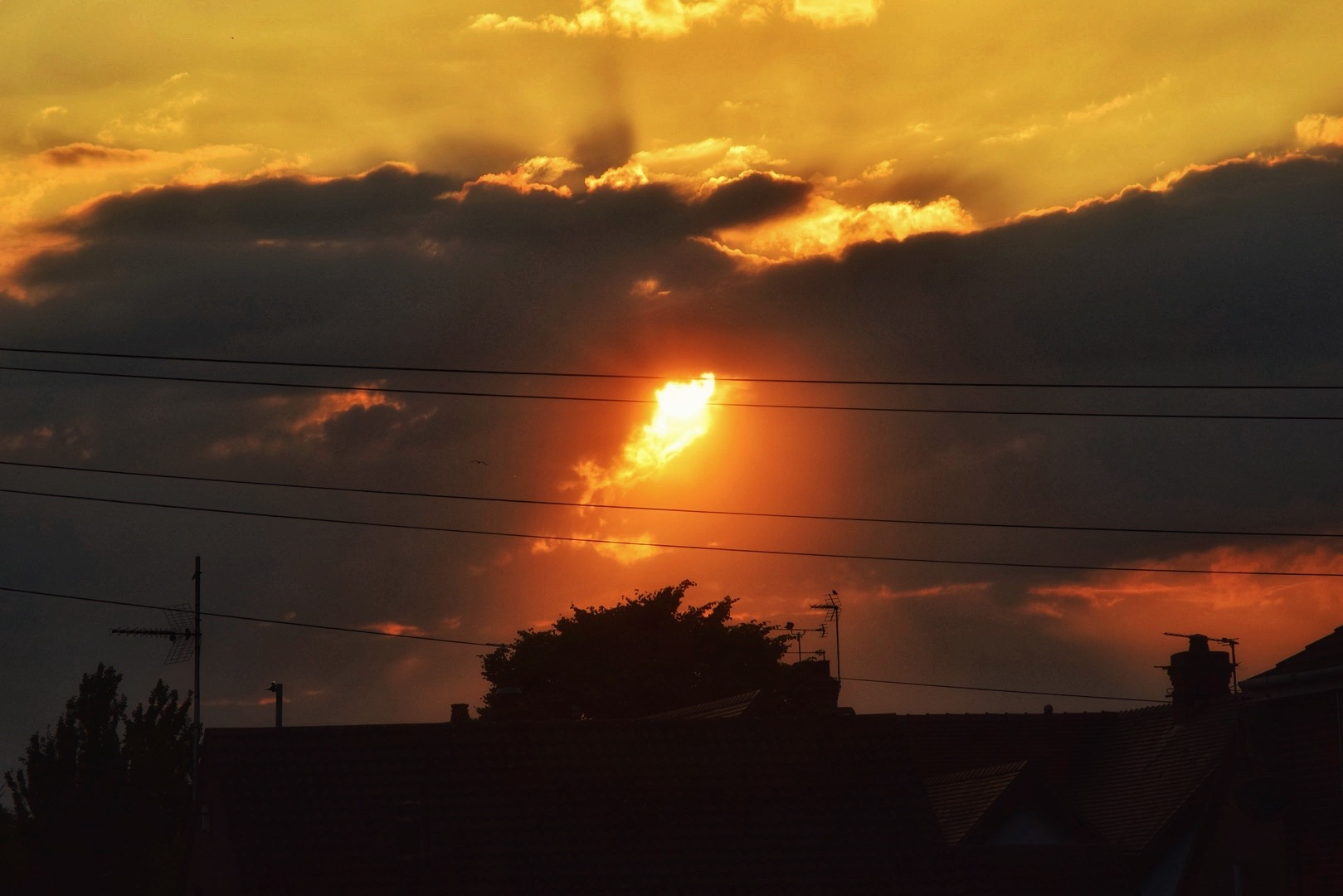 Sunset  by Isajon