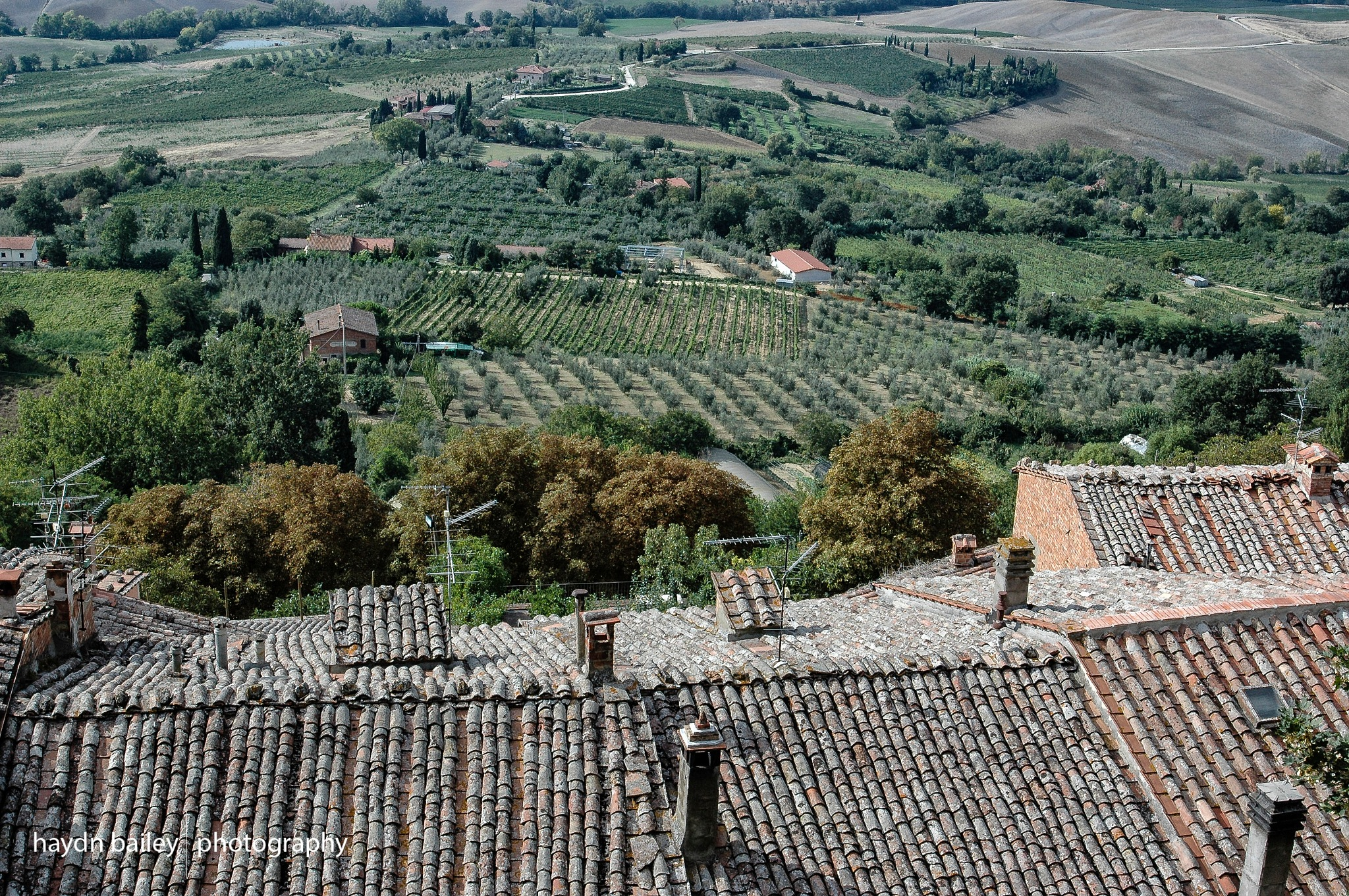 From the rooftops in Tuscany! by Haydn Bailey