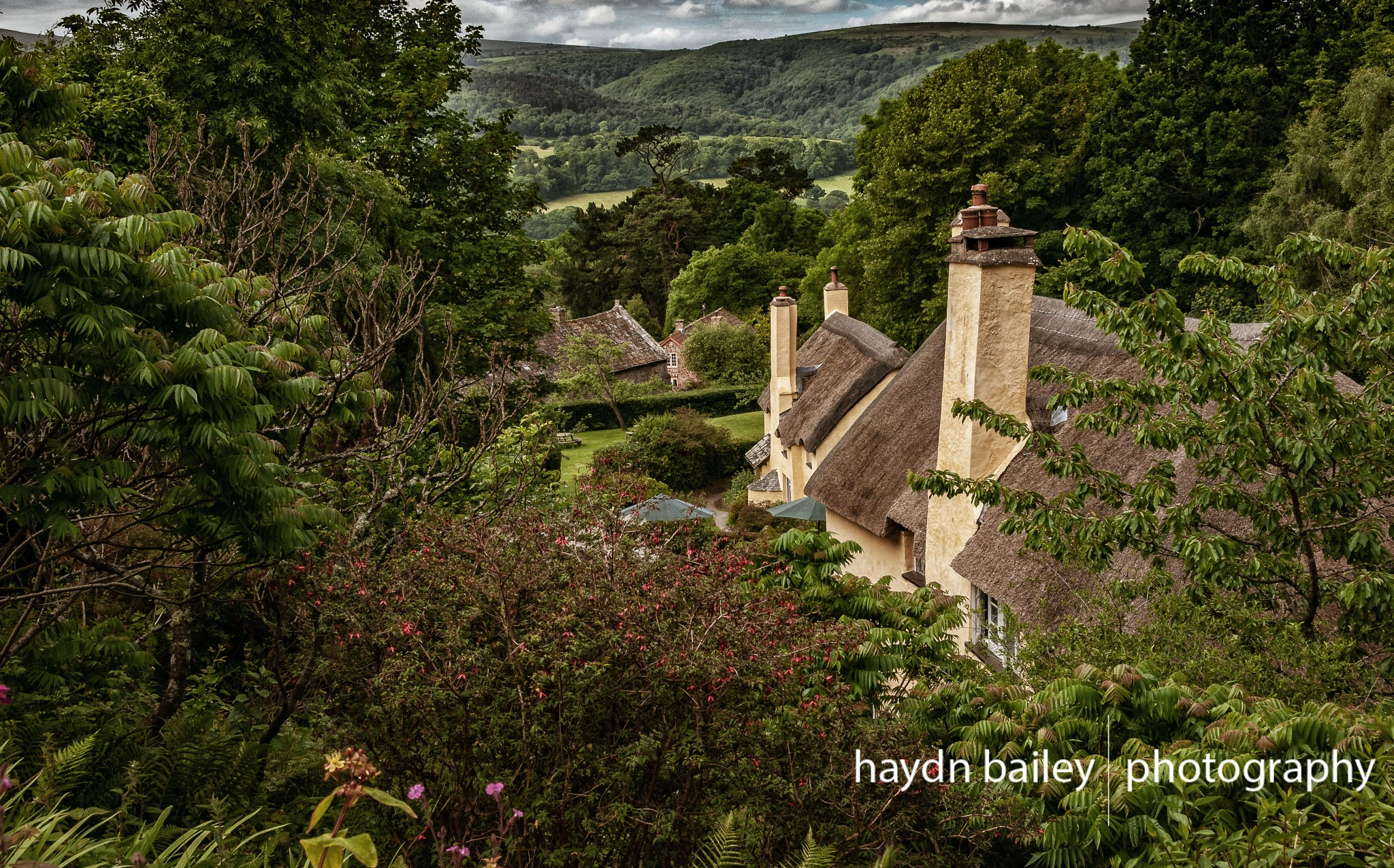 Thatched Cottages by Haydn Bailey