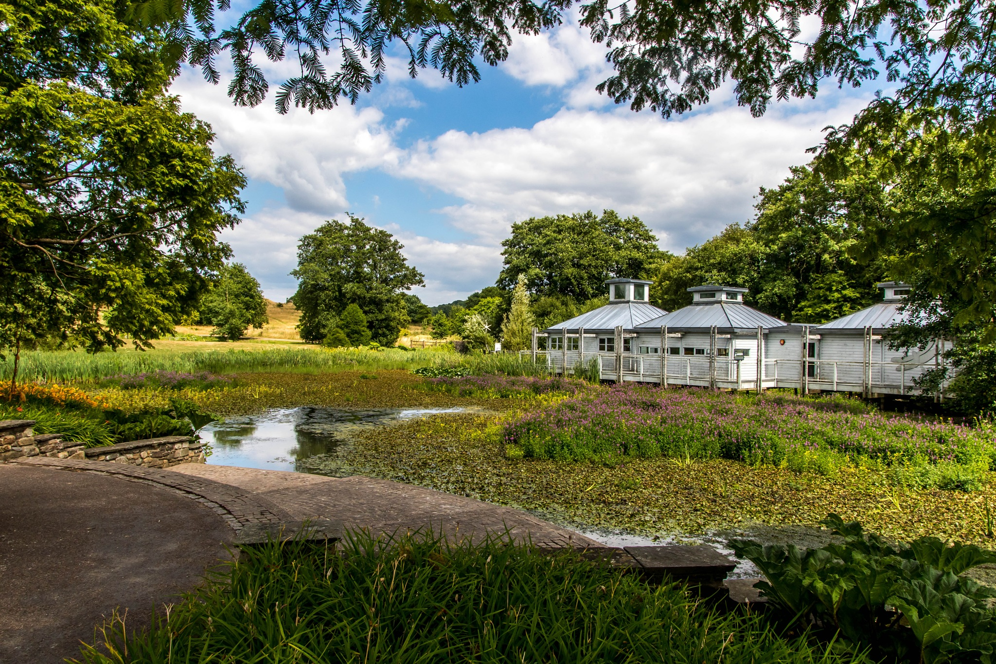 National Botanical Gardens of Wales by John Davies