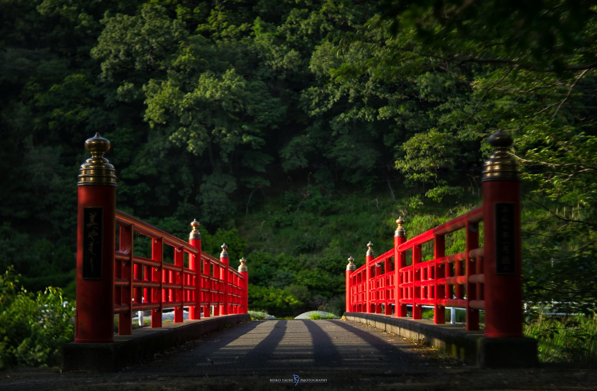Across... by Reiko Yachi