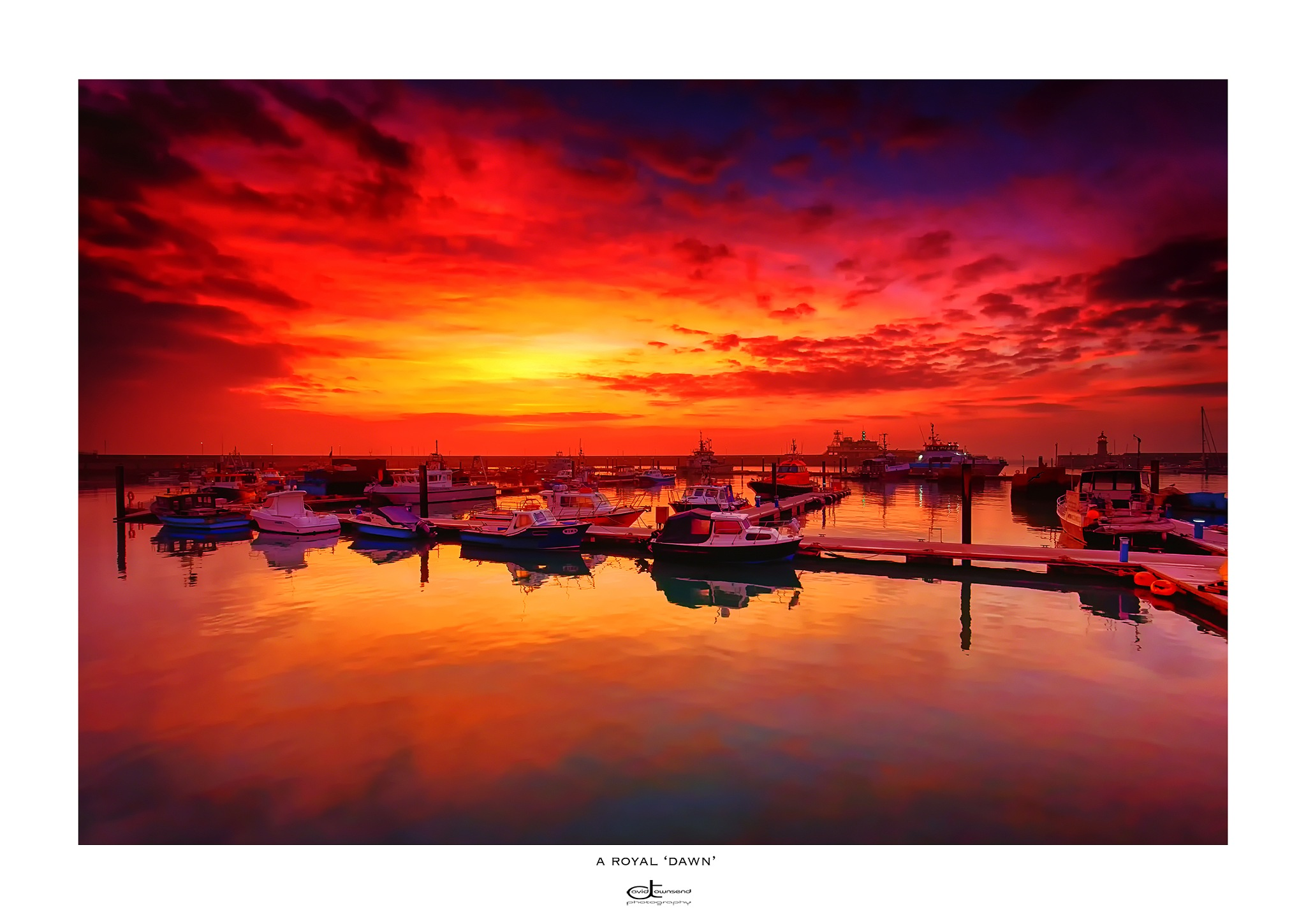 A Royal 'Dawn' by David Townsend
