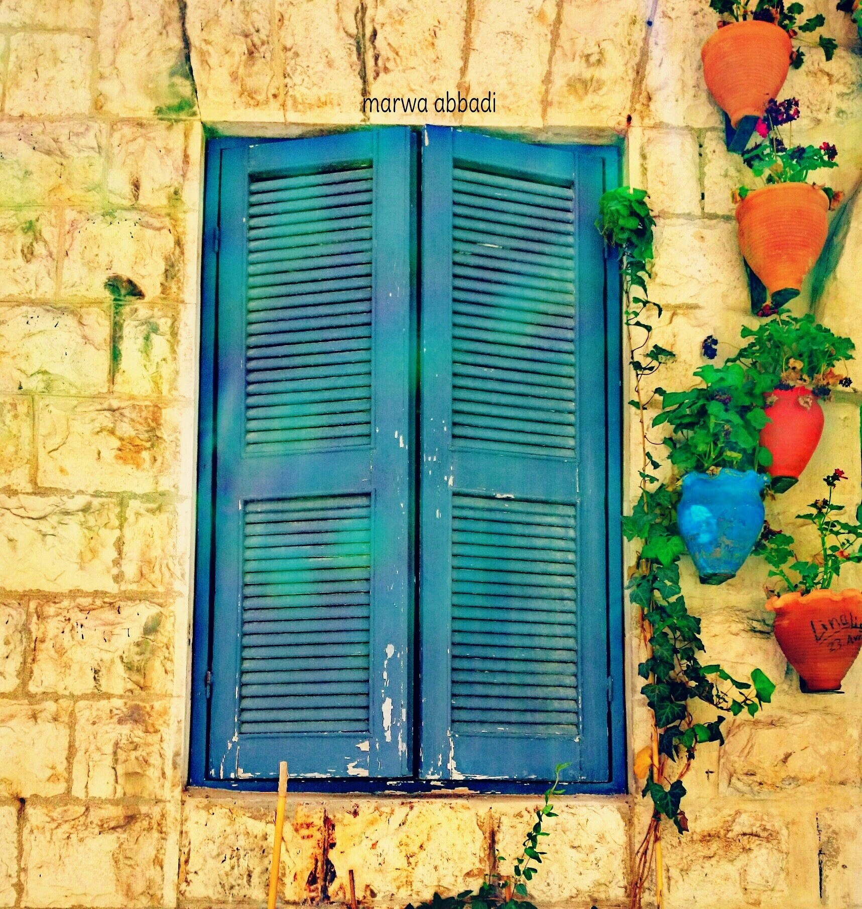 #blue #flower #jordan #love_jo #old_city by Marwa Orieq