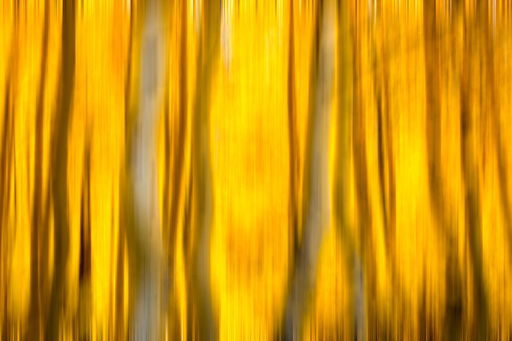 Fire by Robert Schmalle