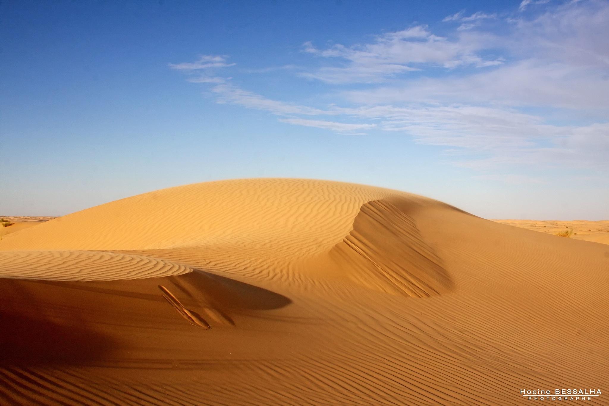 desert by Hocine Bessalha