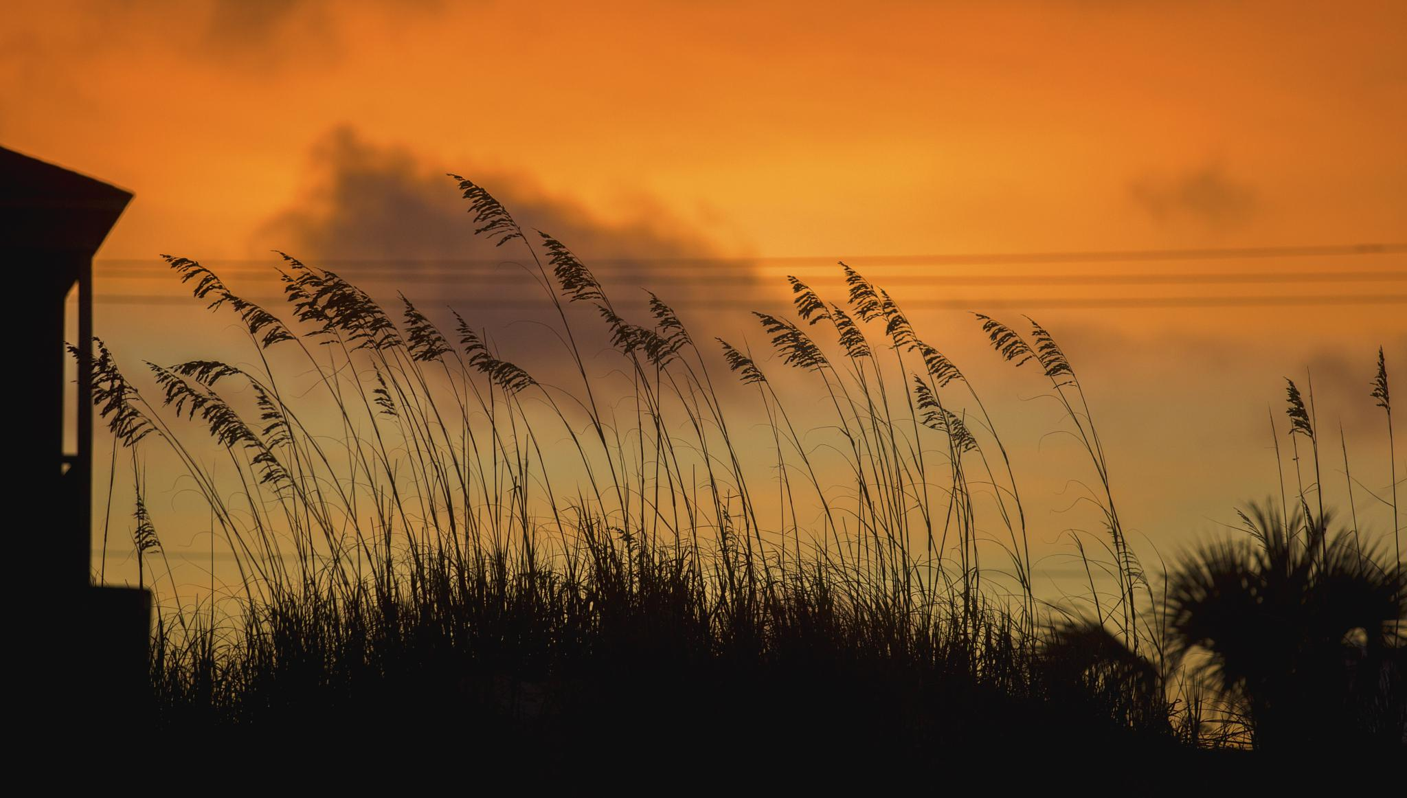 A Beach Sunset by Bill Killillay