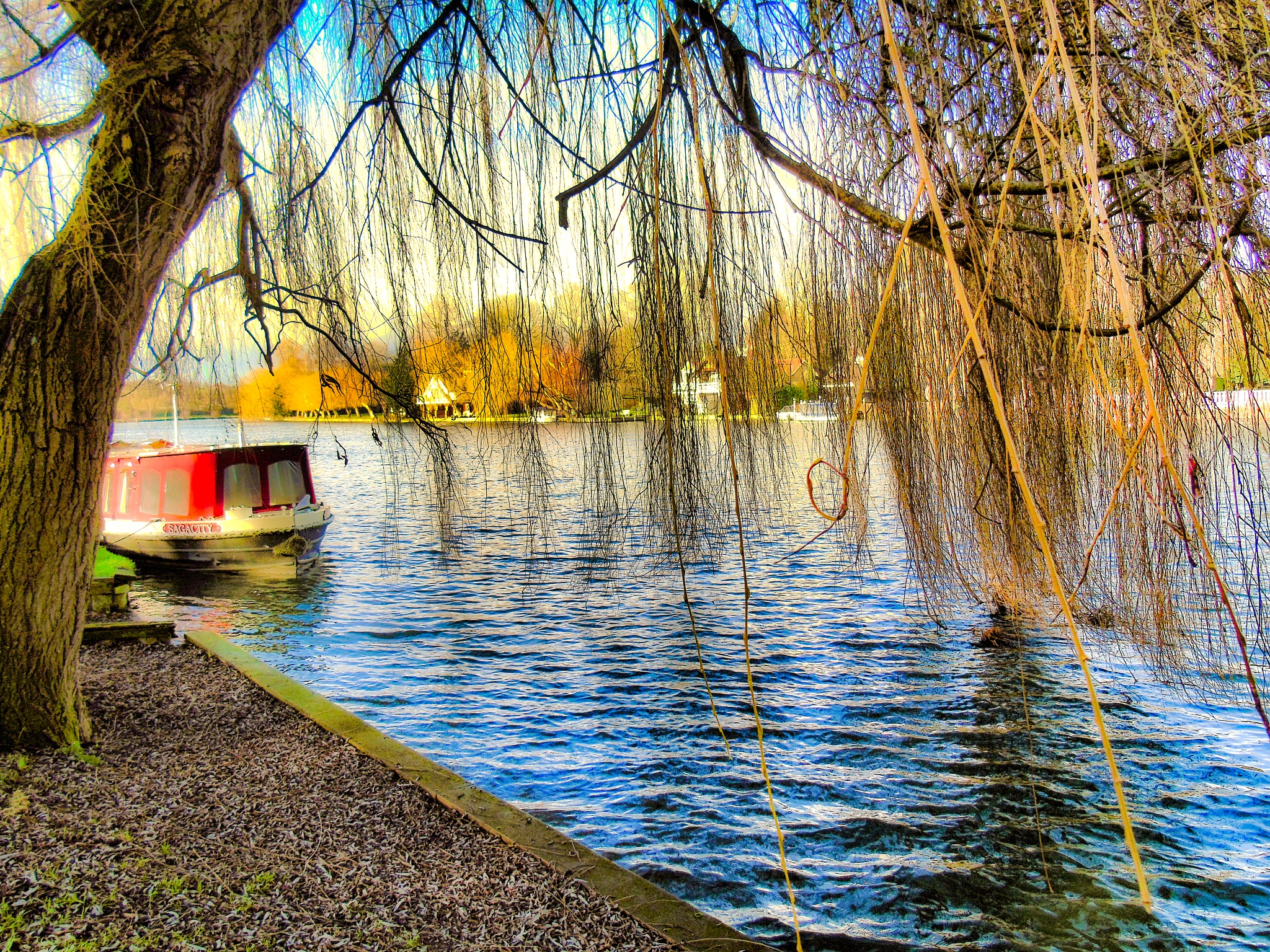 Down by the riverside by David Wagner