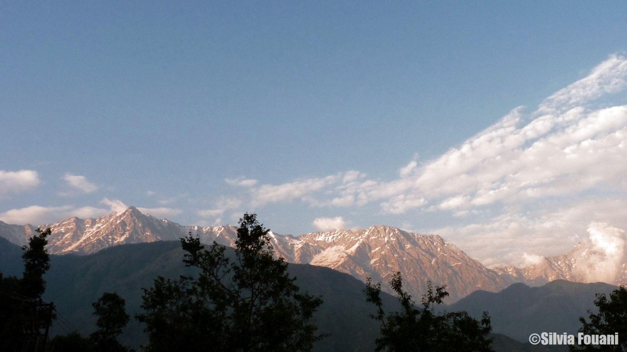 Dhauladhar range (Himalayas) Mcleodganj India by SilviaPhotos