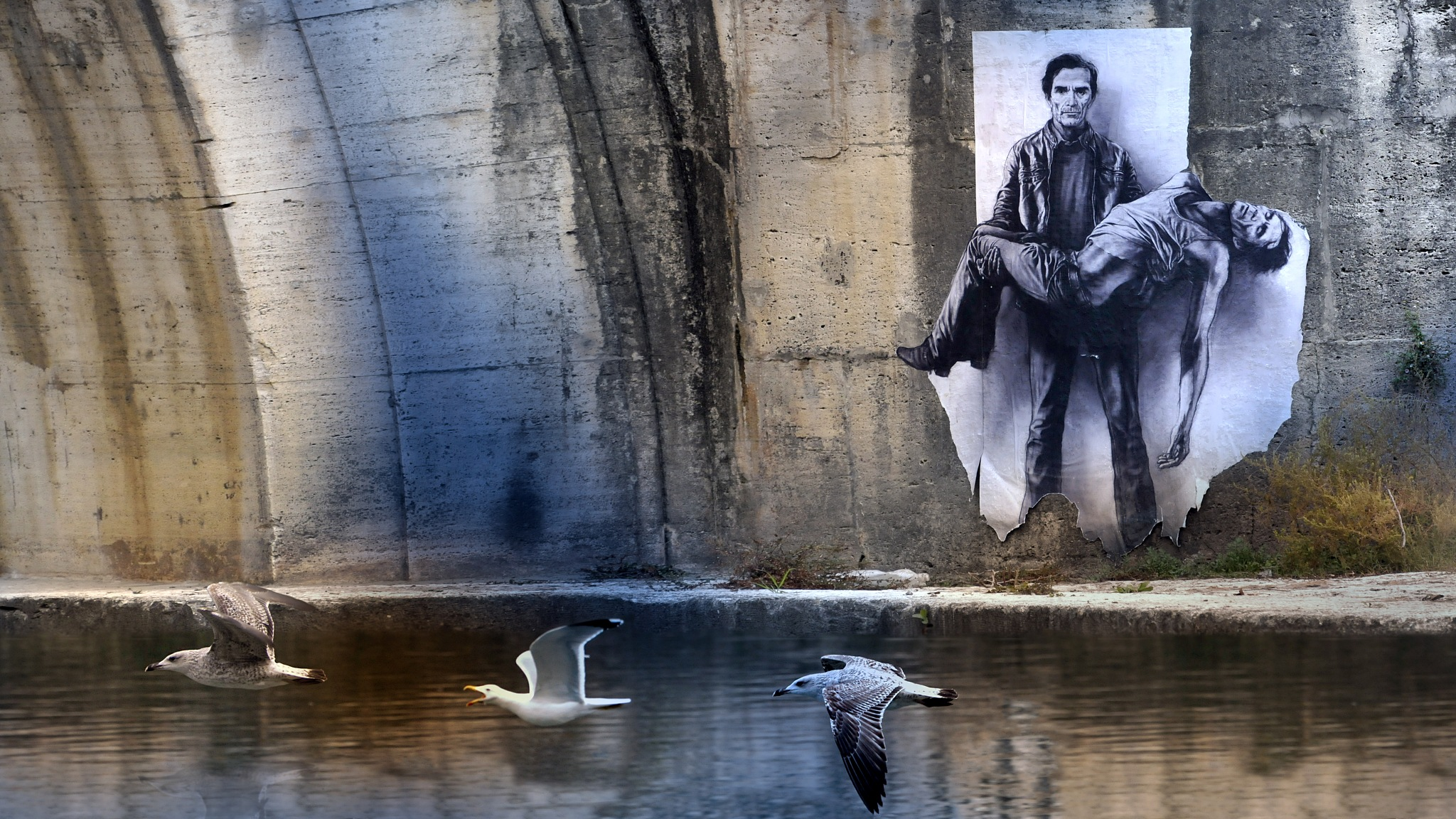 Pity  (Pasolini by Ernest Pignon Ernest) by Roberto Macrì