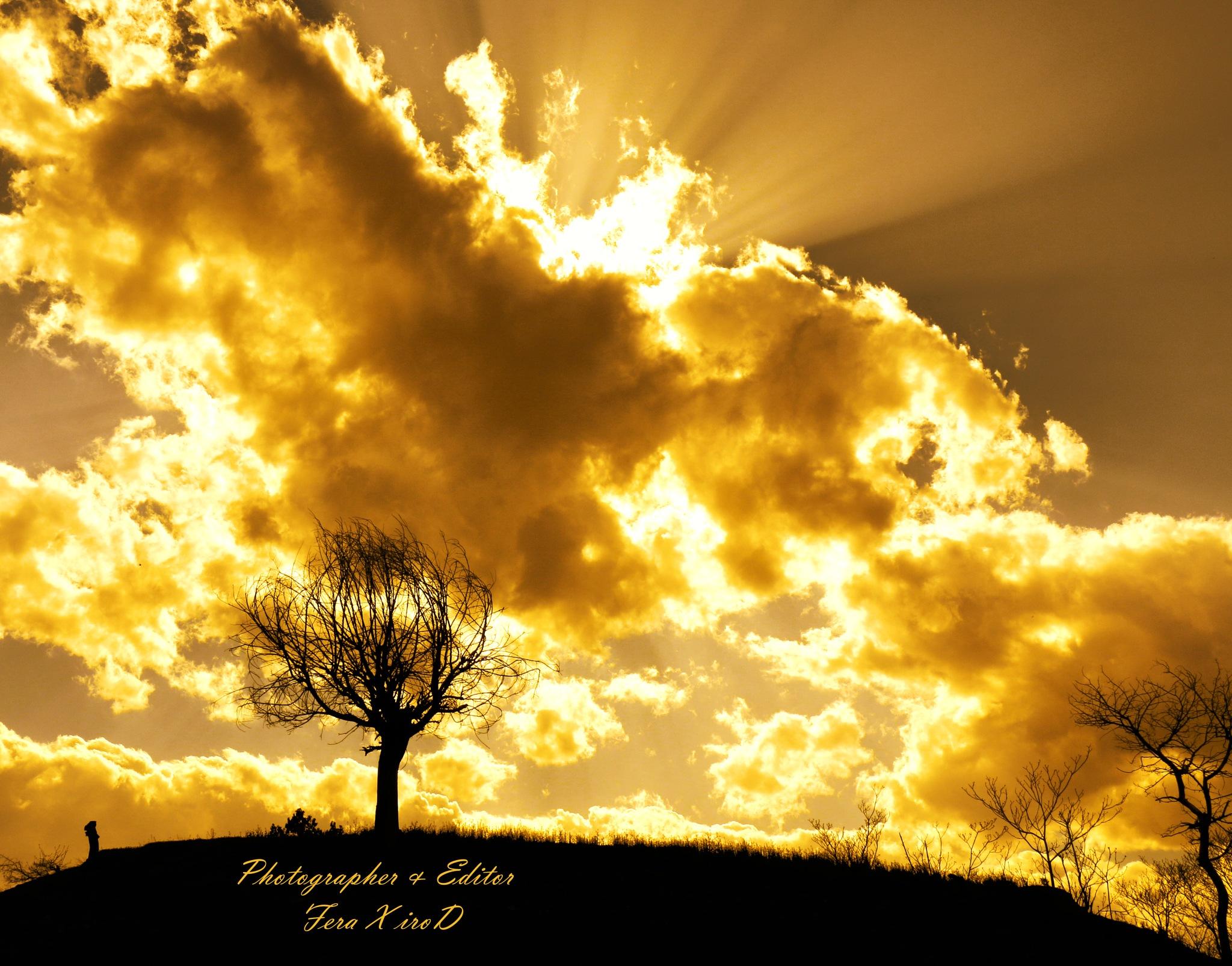hot sunset by mojtabadorri