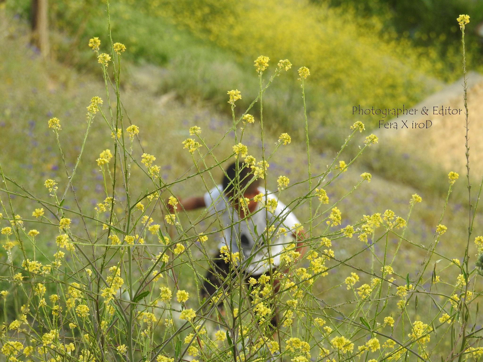 kid & spring by mojtabadorri