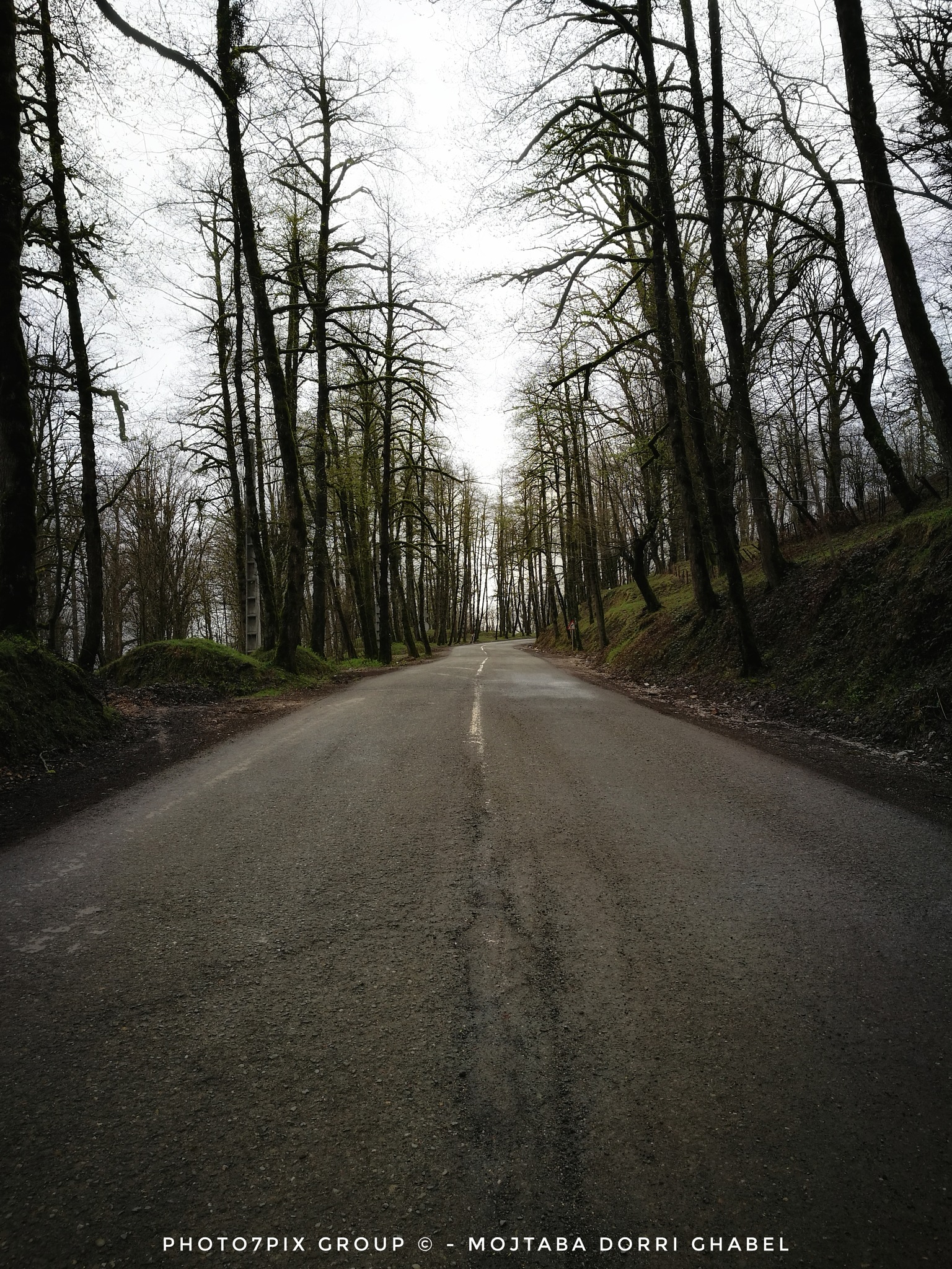 road to nowhere by mojtabadorri