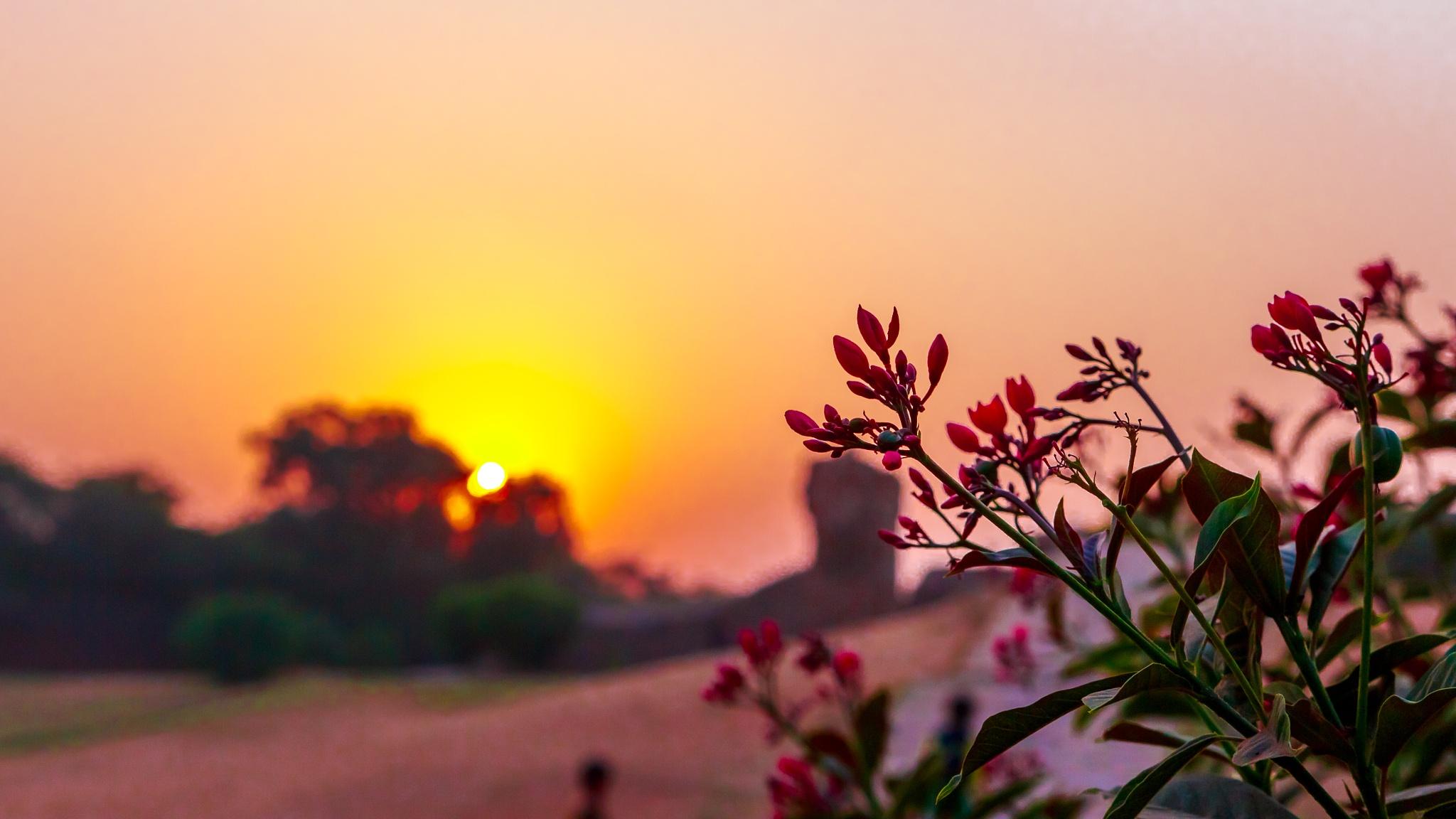 Sunset at Qutub Minar by Anurag Banerjee