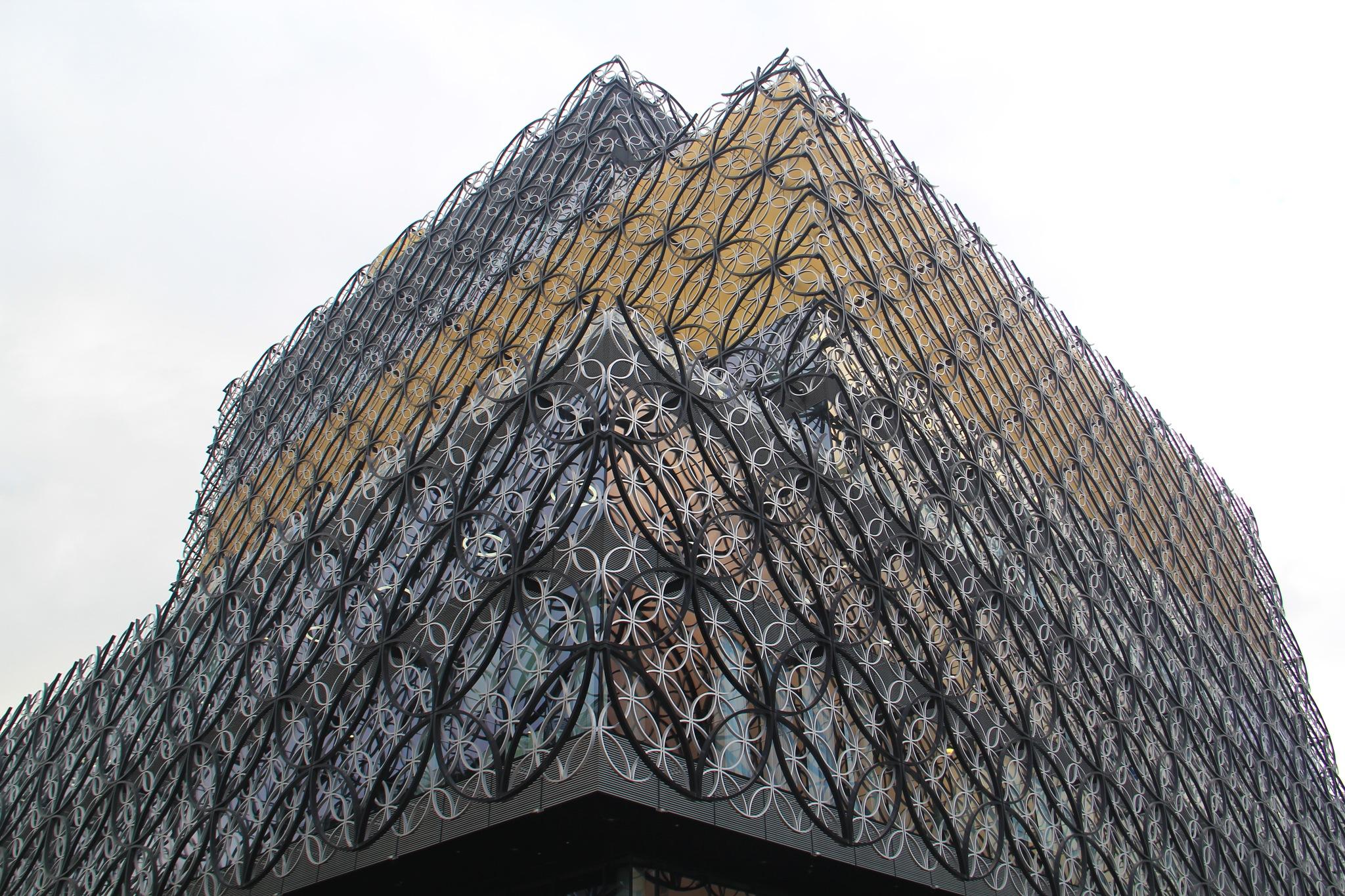 Birmingham Library by Daveschoie