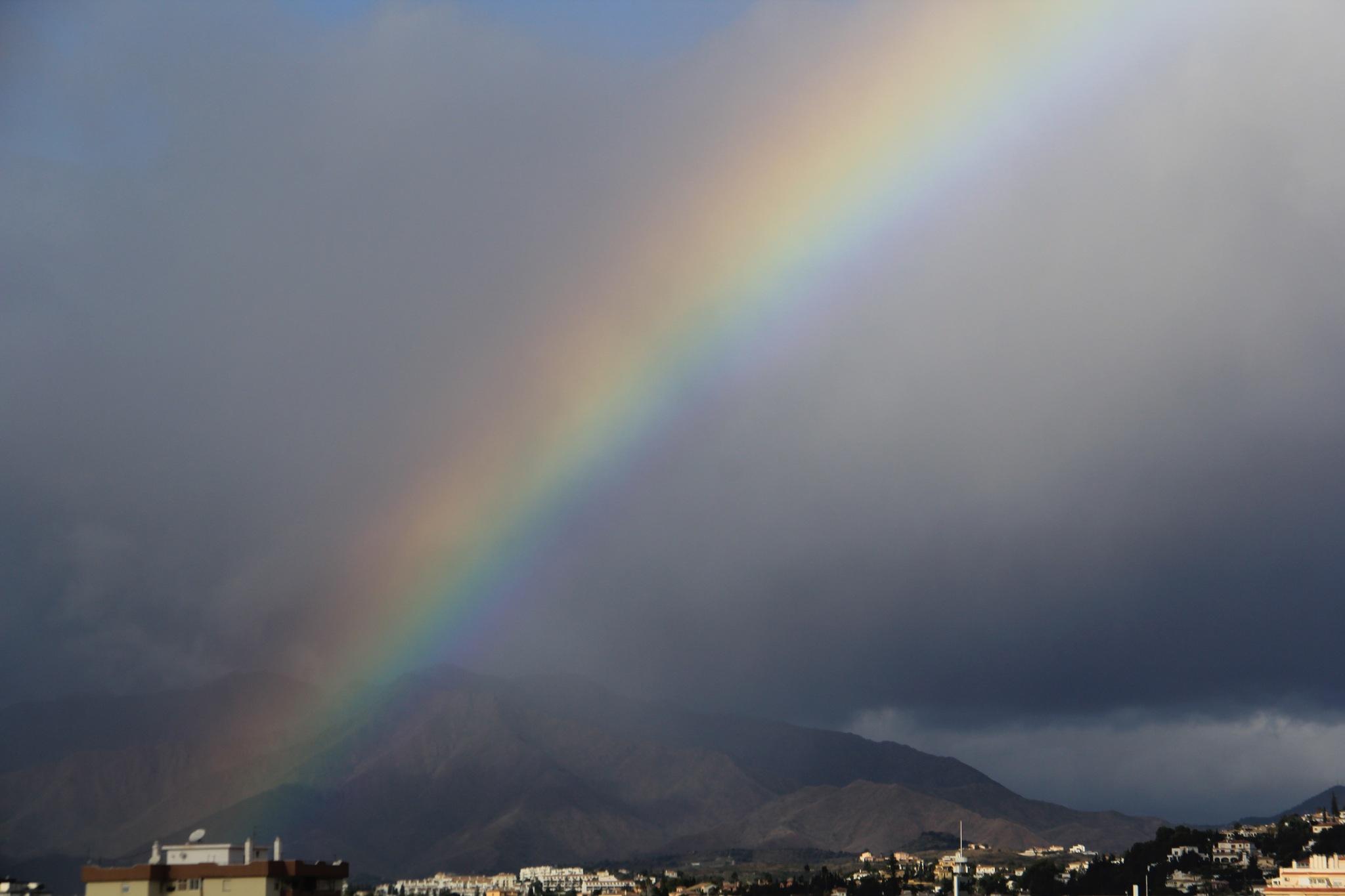 Rainbow by Daveschoie