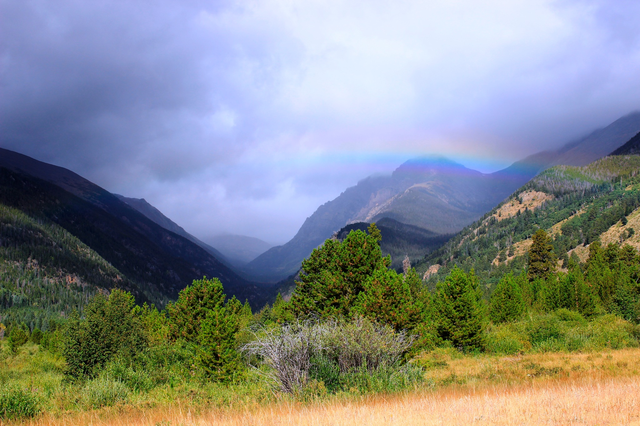 Mountain Rain by Lynda Clayton
