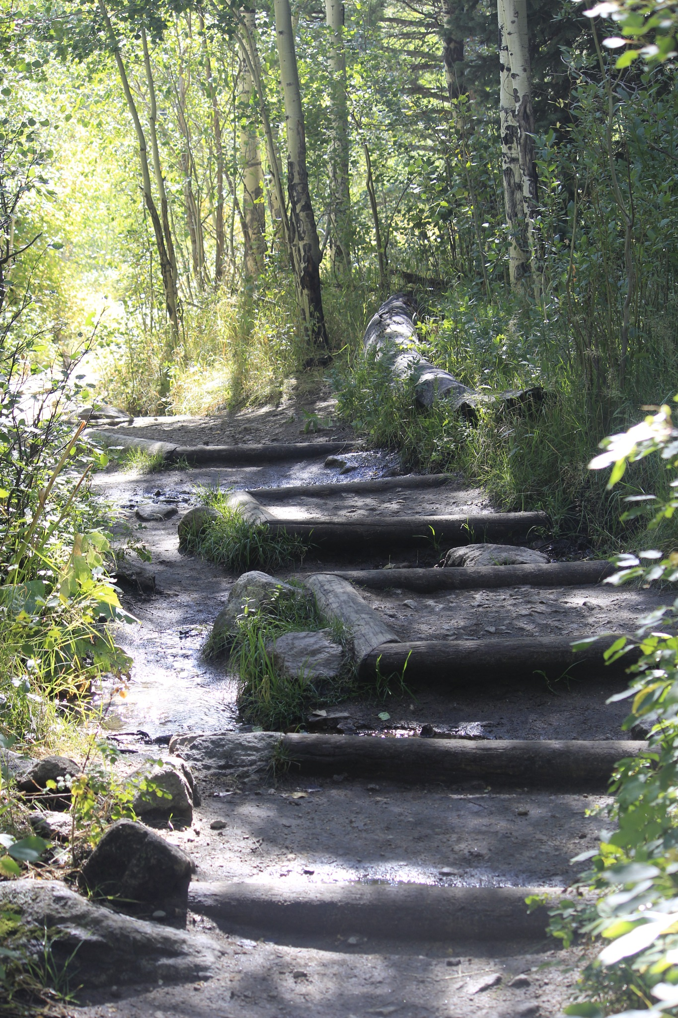 Stairway to My Kind of Heaven by Lynda Clayton