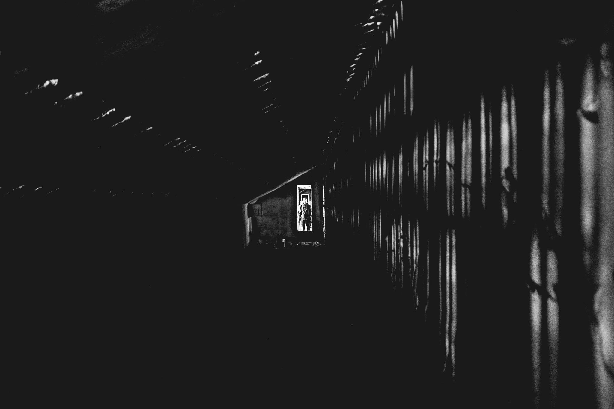 Under The Tribunes by Yaroslav Boshnakov