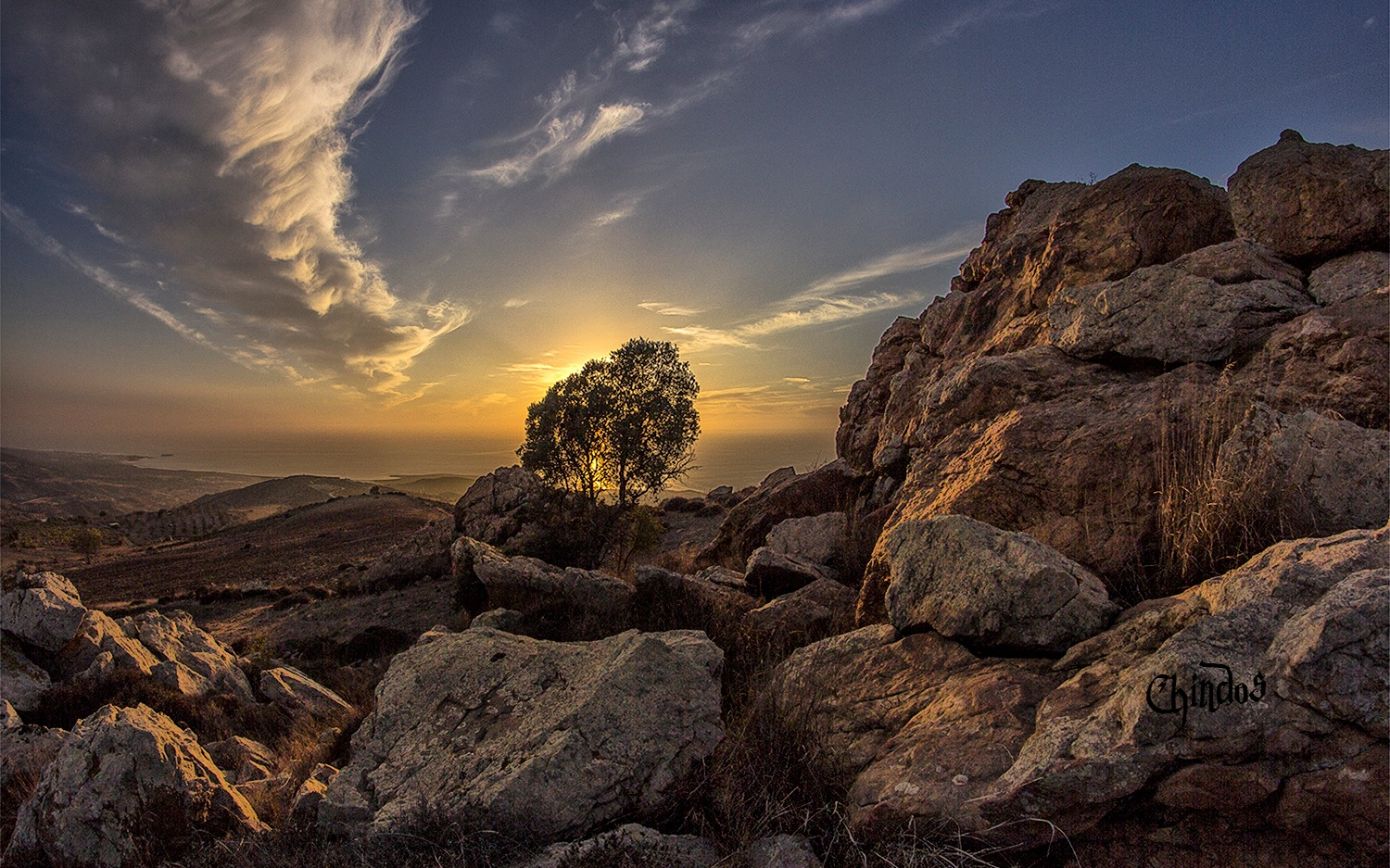 Love Cyprus by Chindos