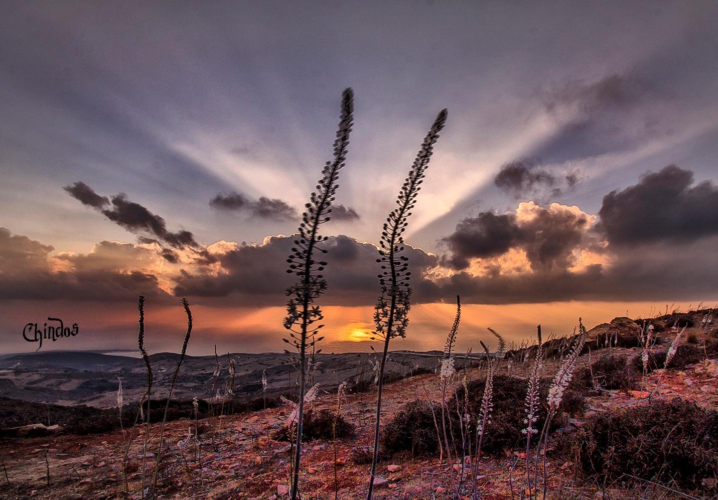 Akamas Cyprus by Chindos