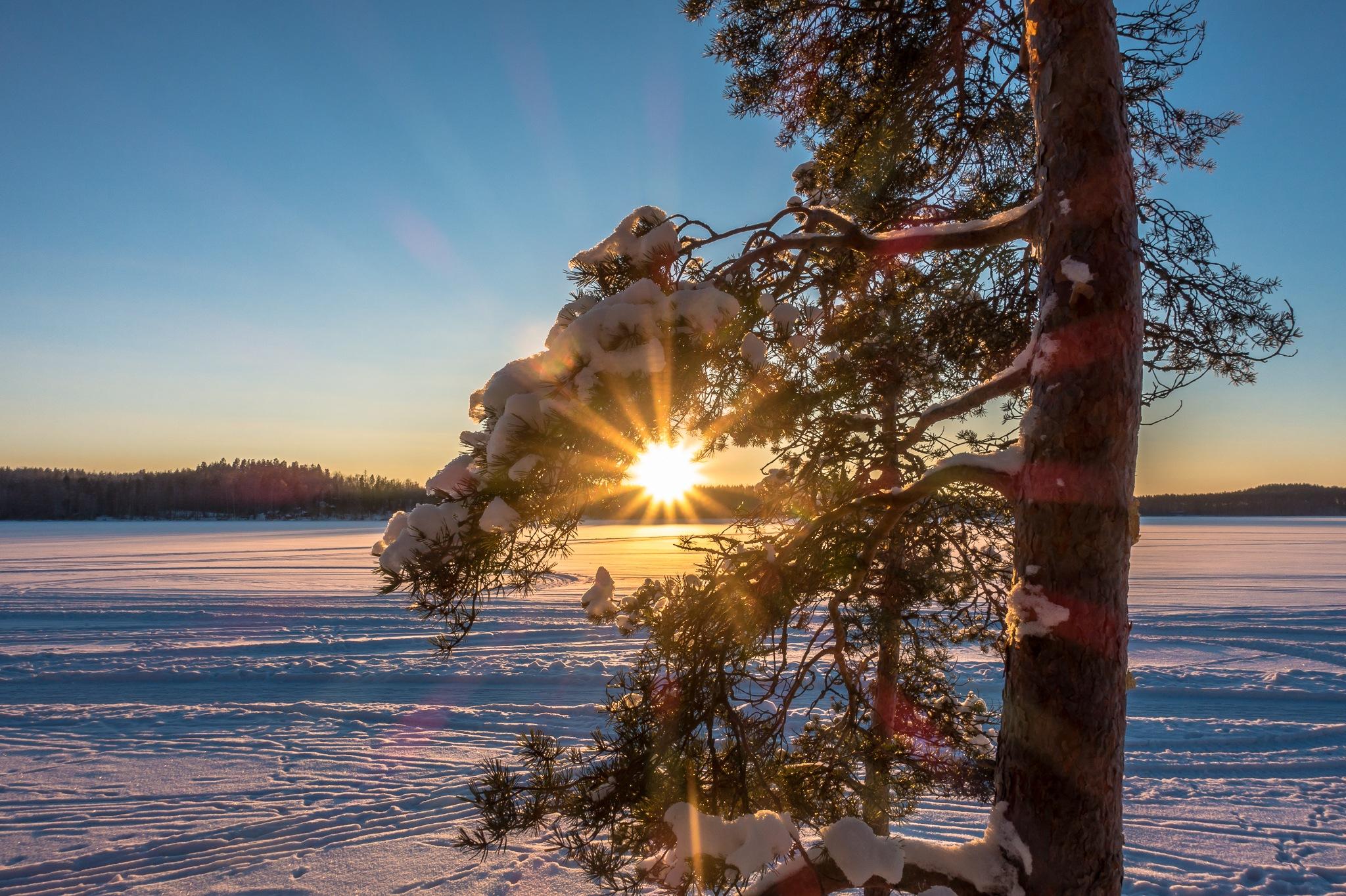 Finnish winter by Anne_V