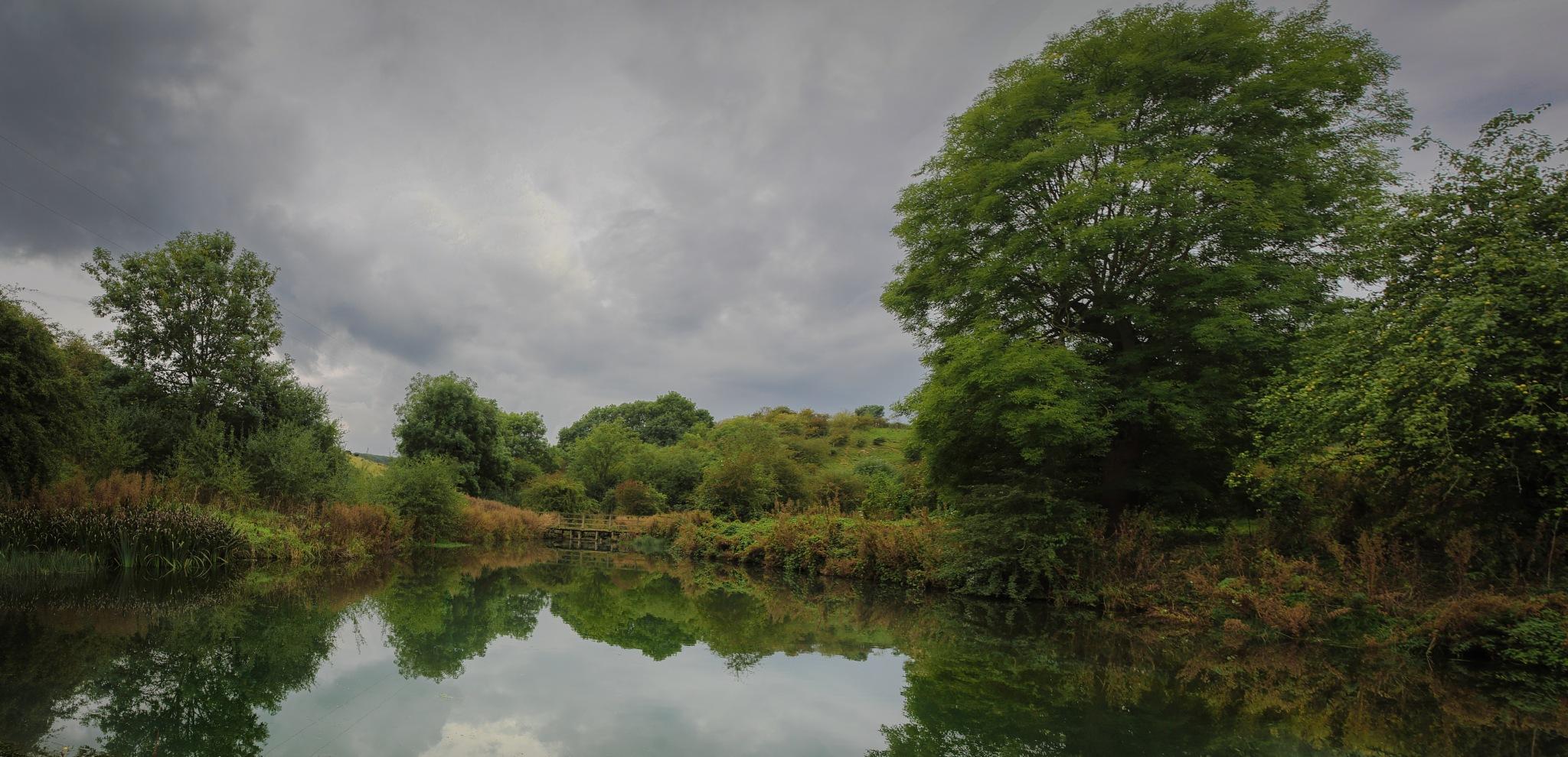 Pond by Dave