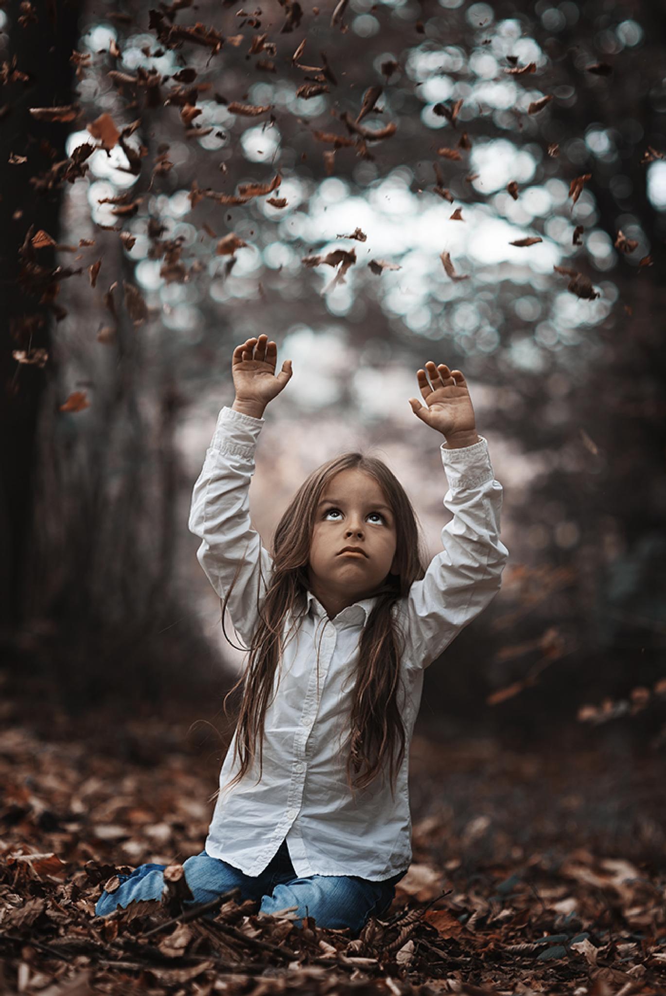 boy and autumn by Amir Bajrich