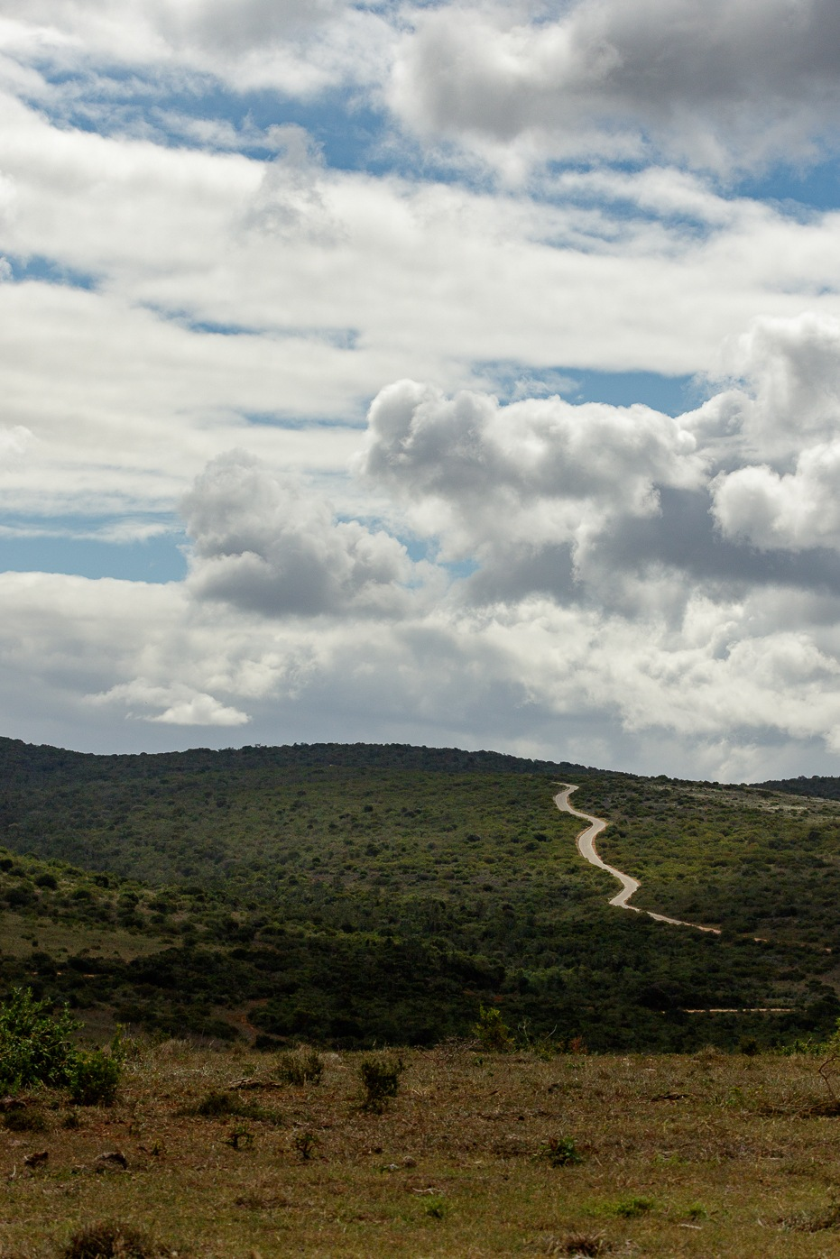 Crooked road up to the mountain by Charissa de Scande Lotter