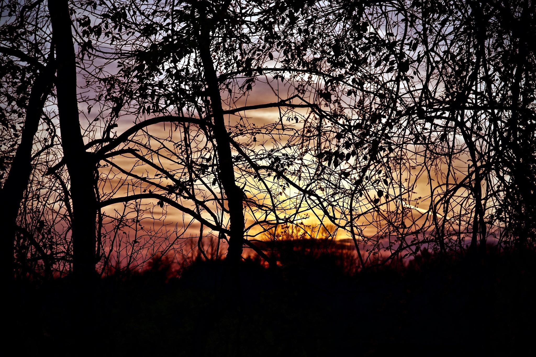 Sunset  by Drnoma