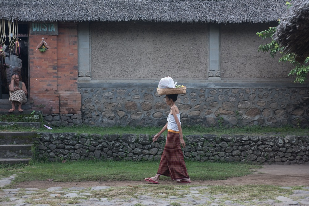 Bali Life by davemet