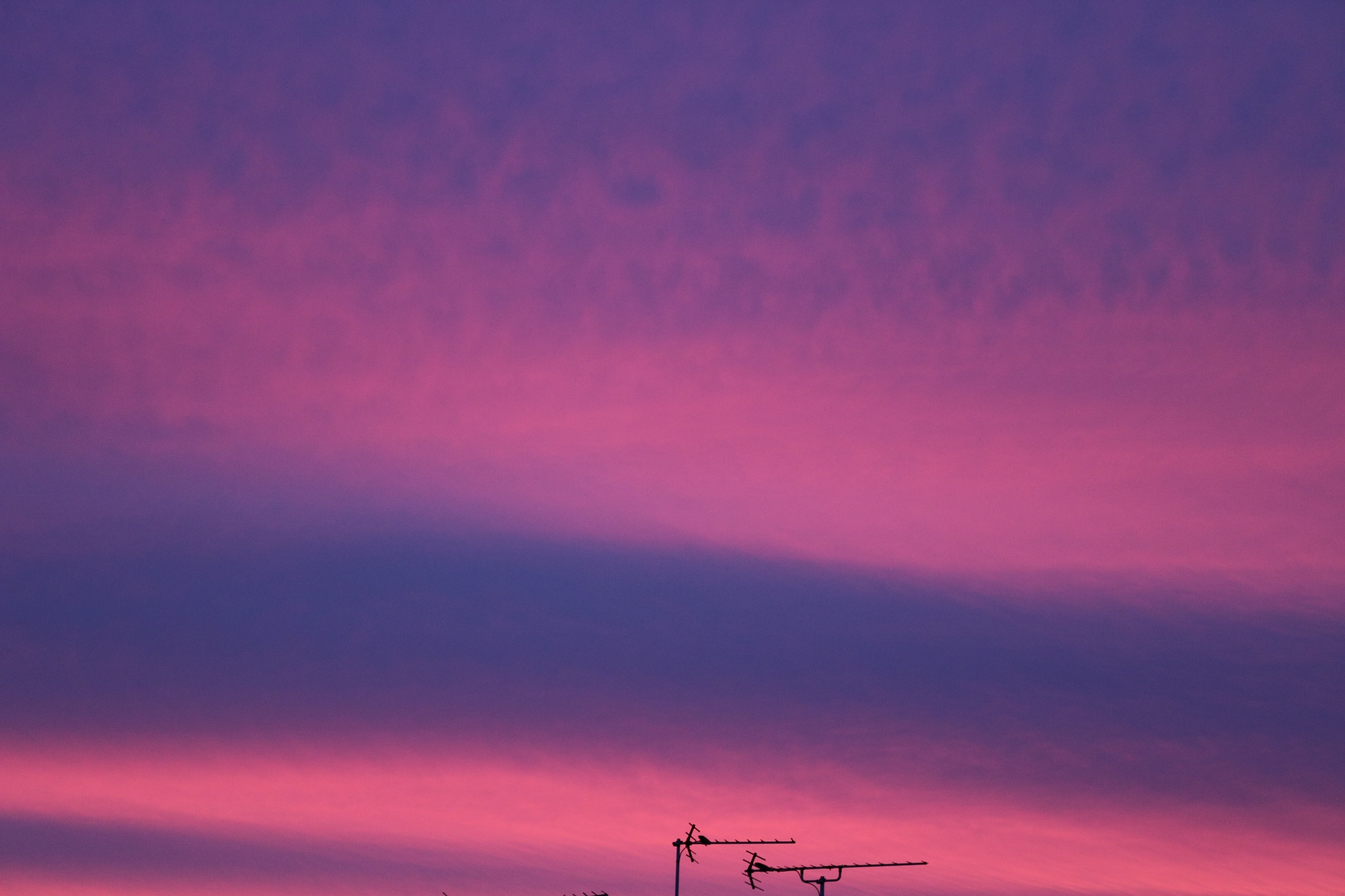 Red/Purple sky  by CathrynJ