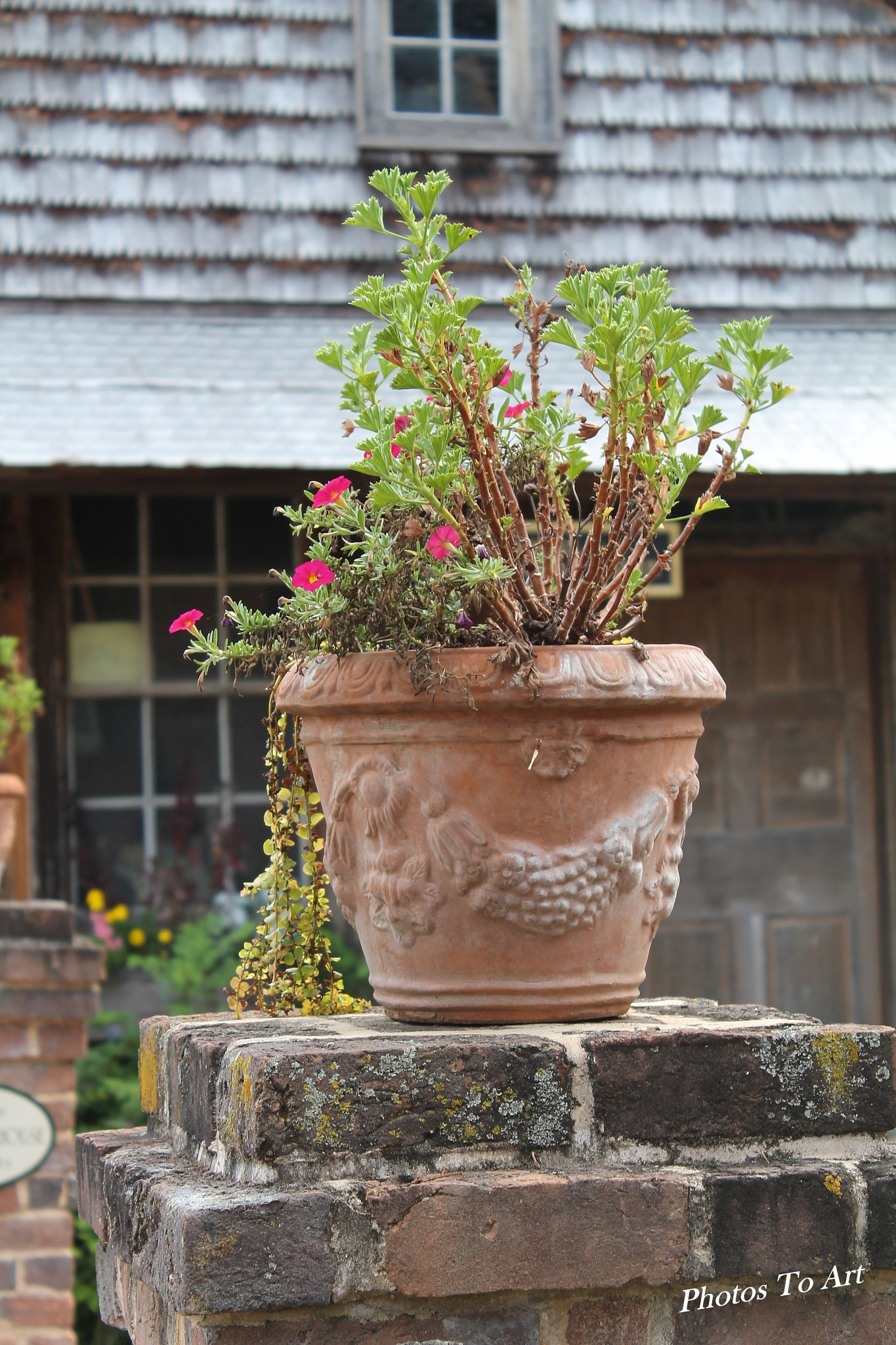 clay pot out front by Calvin Burdette