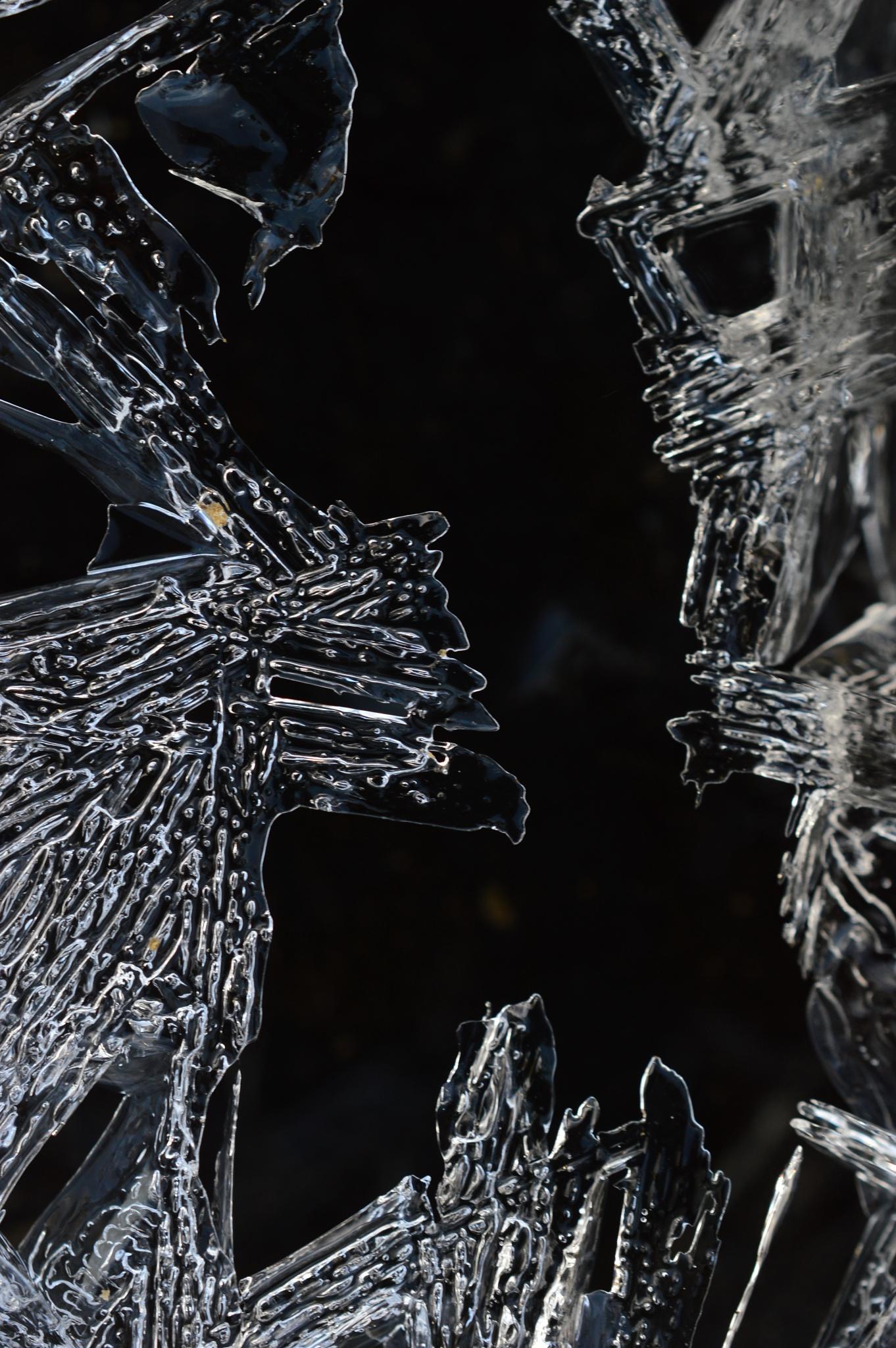 The ice age by Bram Dekleer